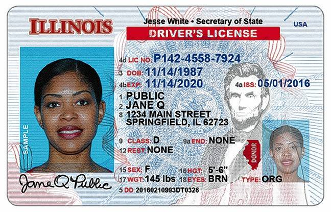 Illinois Drivers License lookup Ages