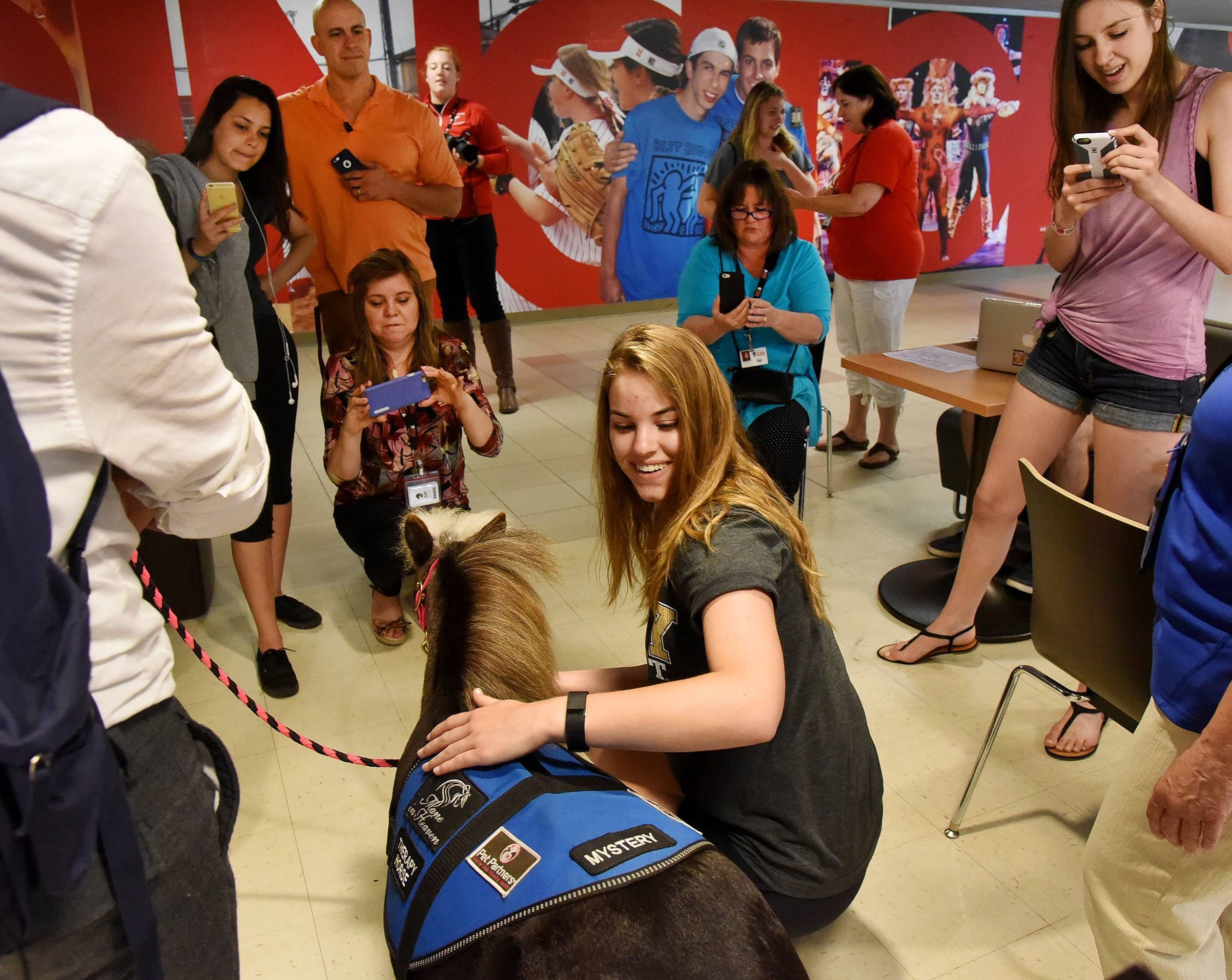Barbara Malczynski, a Barrington High School junior, pets mini horse Mystery at the school Wednesday morning. Mystery and two other horses visited the school to provide students a brief respite from the stress of final exams.