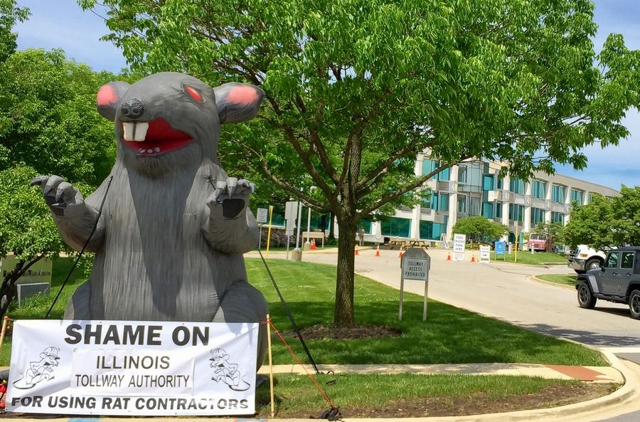 """Scabby"" the inflatable rat belongs to the International Union of Operating Engineers Local 150. He's hanging out at the Illinois tollway after the board hired a nonunion landscaping company."