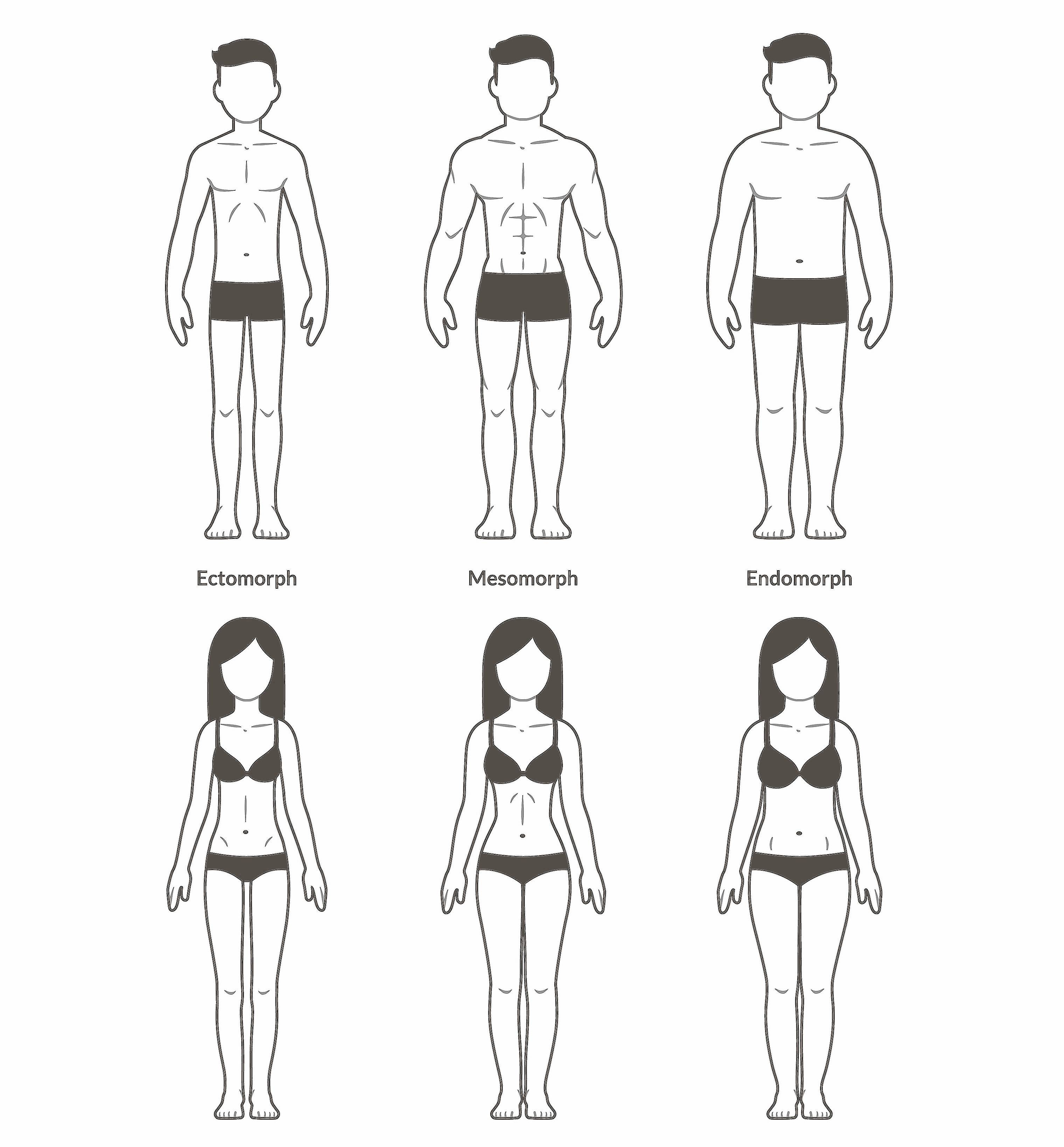 Male and female body types: ectomorph, mesomorph and endomorph.
