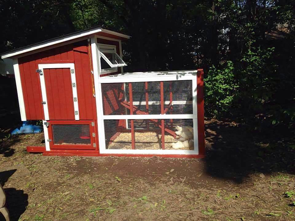 Jennifer Rasmussen's backyard chicken coop sits empty today after Bartlett officials told her keeping chickens is against village regulations. Now, Rasmussen and her husband are working to change village ordinances so residents can own chickens.