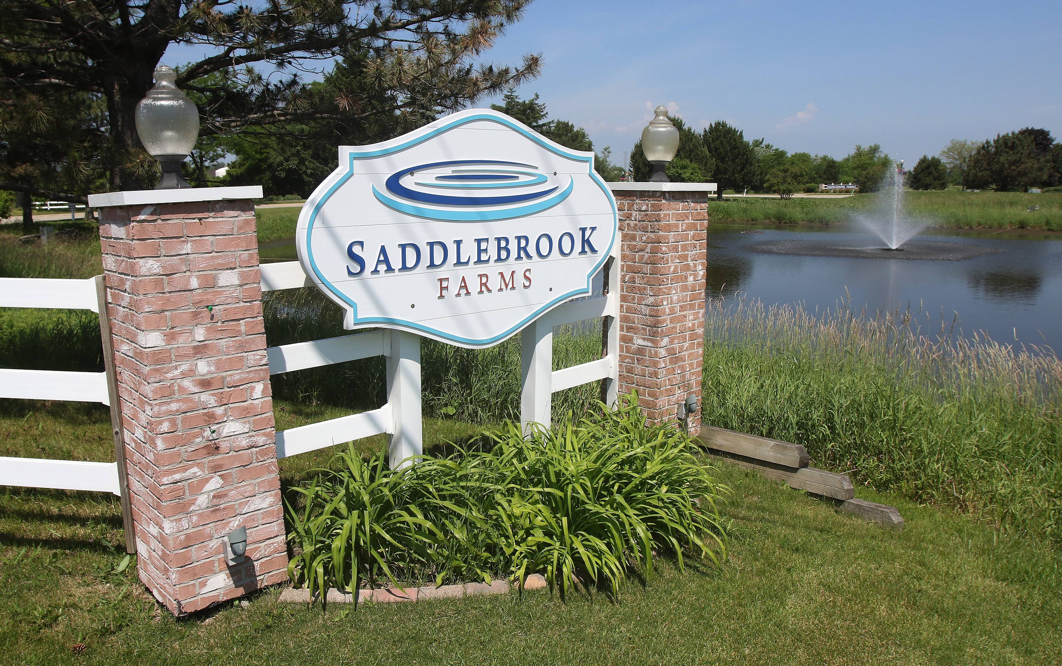 Saddlebrook Farms in Grayslake is an active-adult community for those 55 and older.