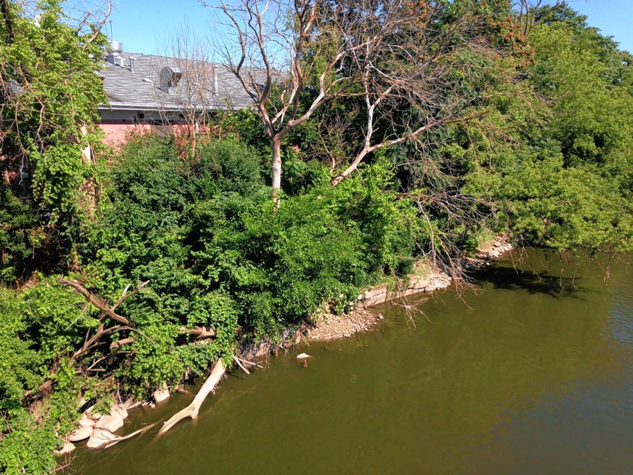 Fixing erosion along Batavia's riverbank may cost up to $1.5 million