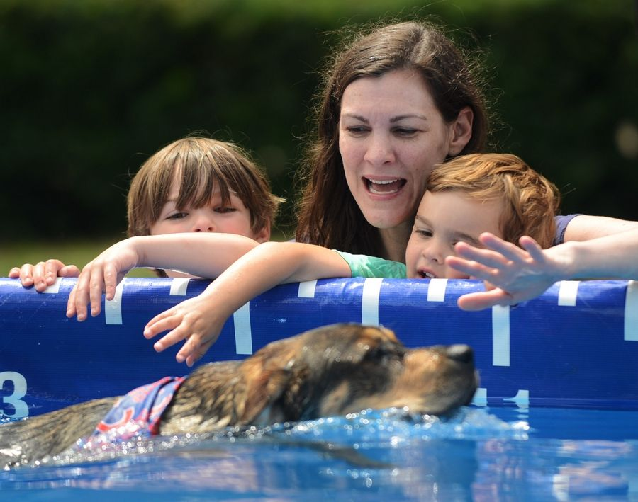 Dog Days of Summer continues in Libertyville