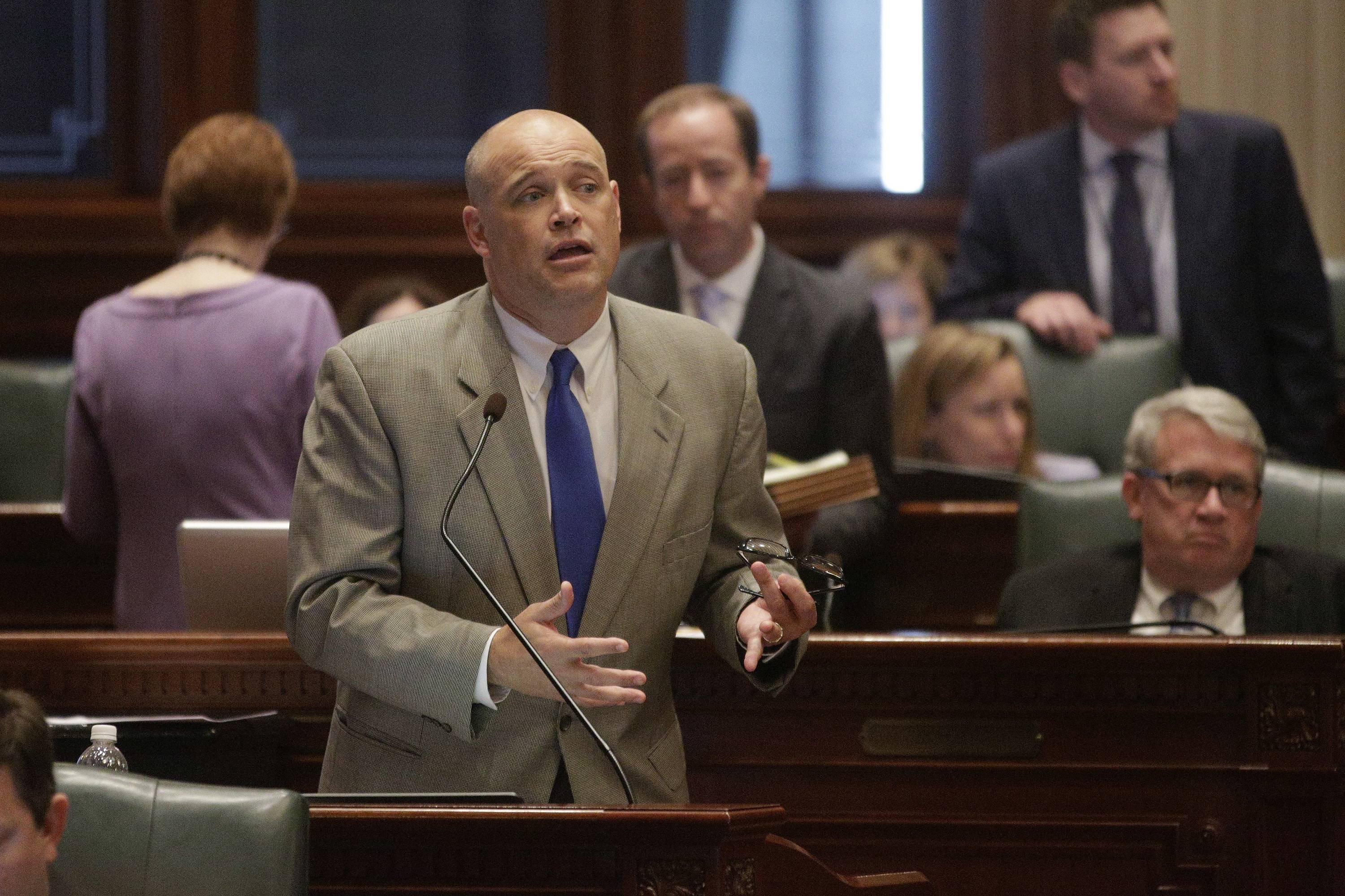 Former state Rep. Ron Sandack, a Downers Grove Republican, speaks on the Illinois House floor.