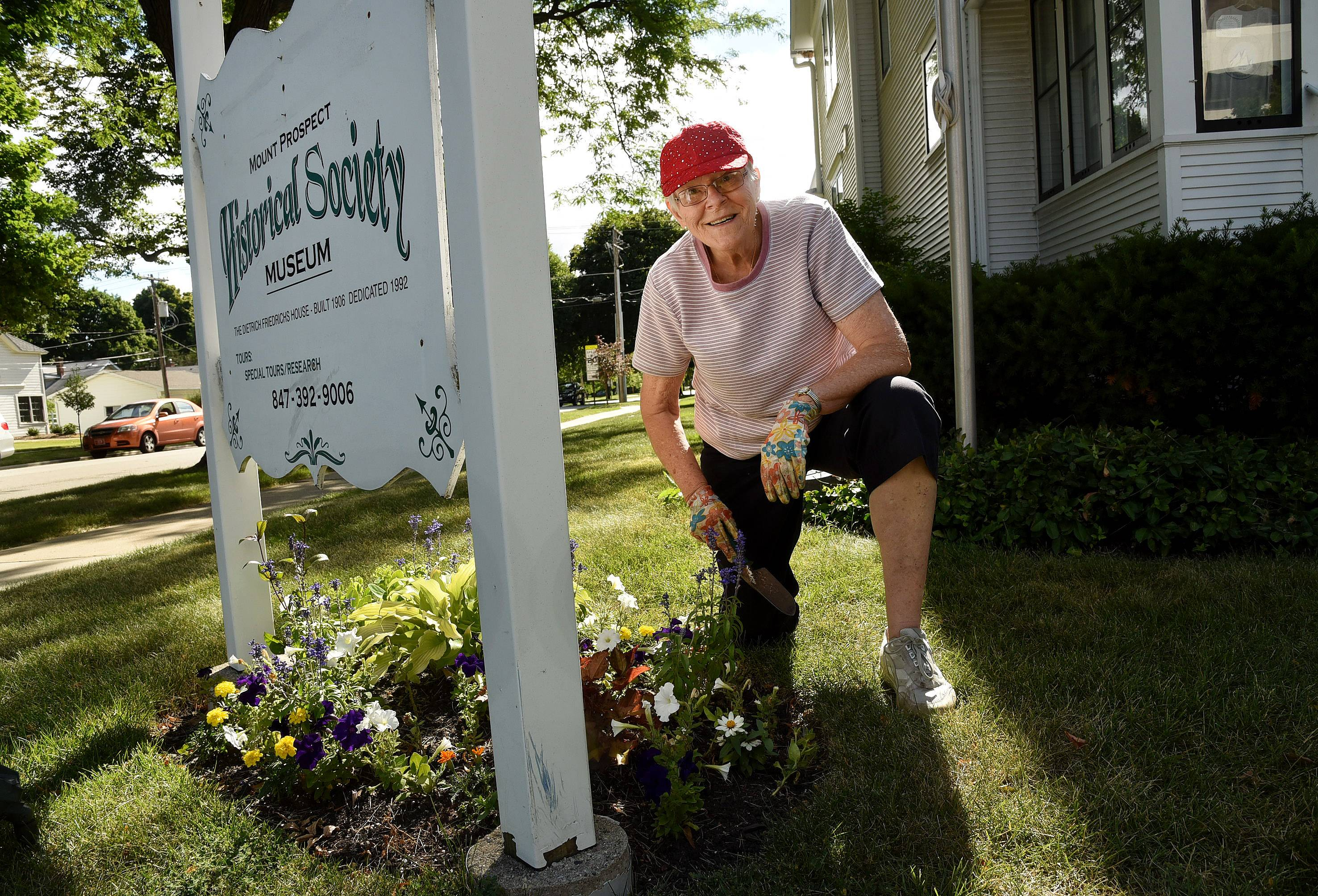Rita Waters, who is nearly 80, volunteers her gardening skills at the Mount Prospect Historical Society's flower beds.