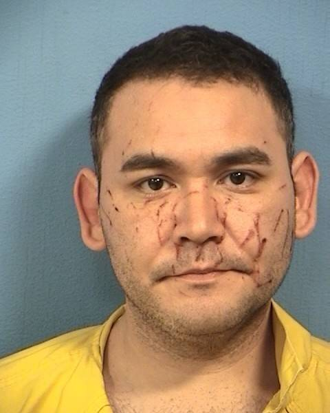 Aurora man pleads guilty to strangling DuPage jail nurse