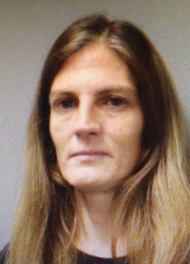 Tiffany Moormann of Bloomingdale has pleaded guilty to stealing more than $10,000 from the Winnebago Elementary School PTO.
