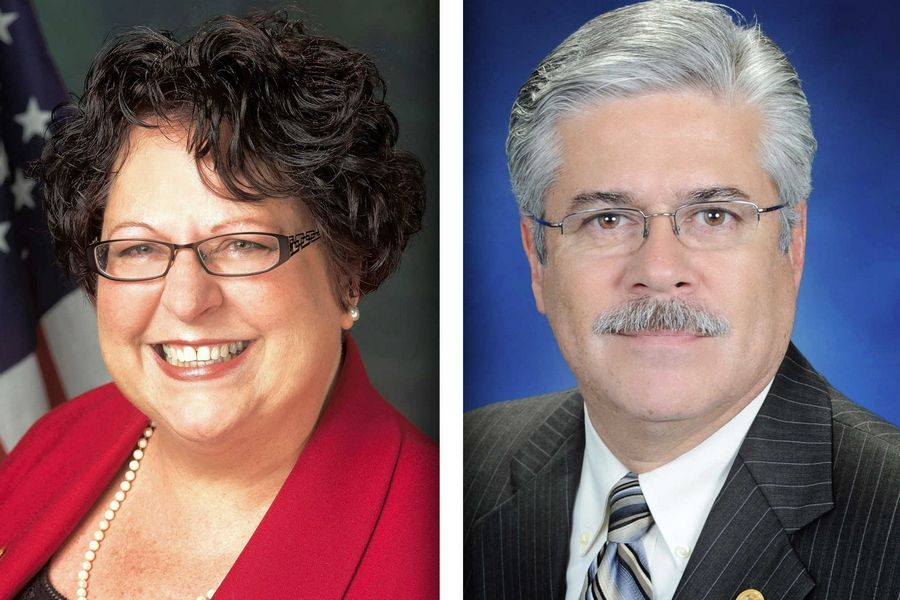 Republican Katy Dolan Baumer and Democrat Fred Crespo are candidates for 44th House District.