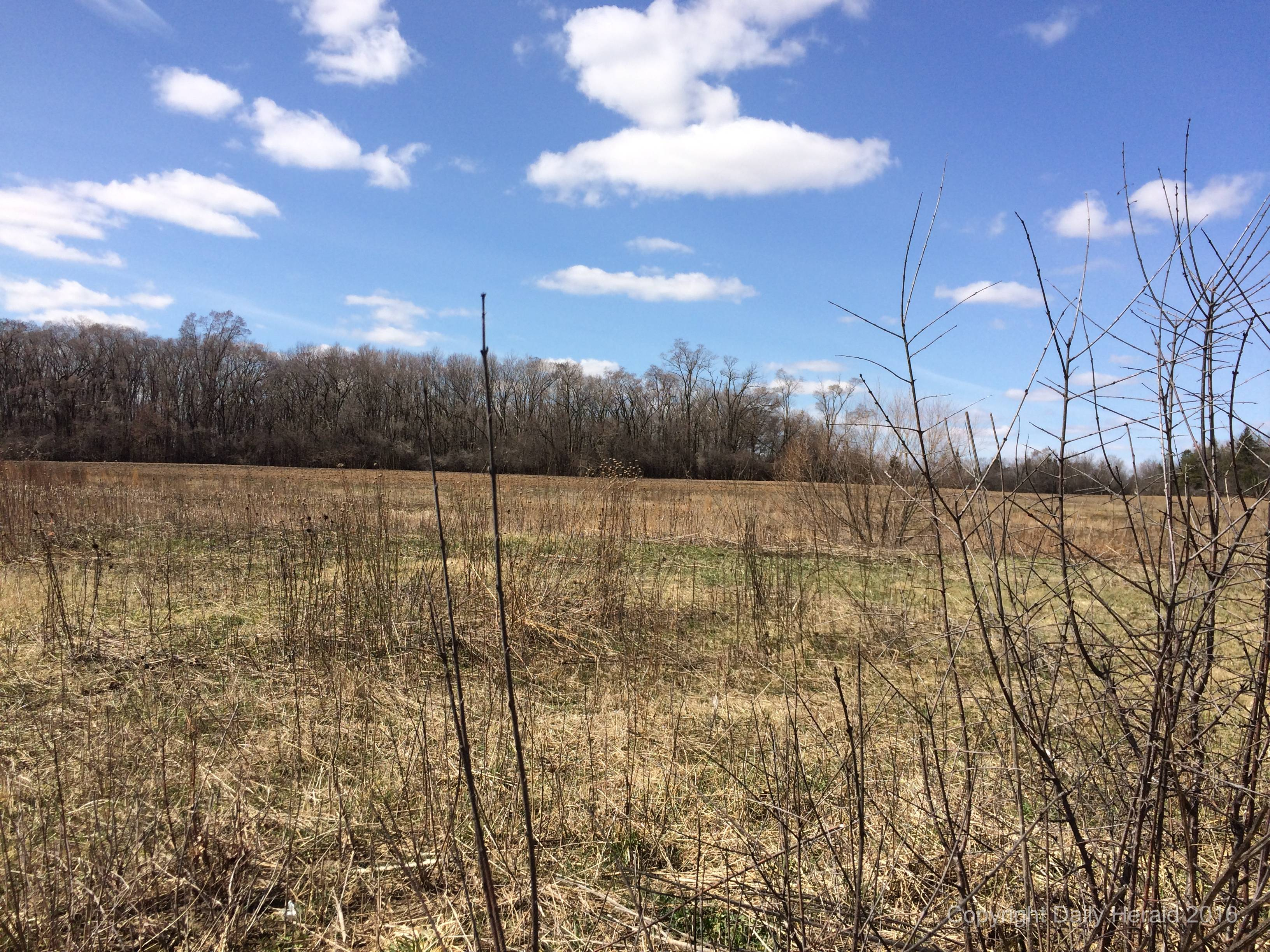 Public review begins for long-planned subdivision in Libertyville