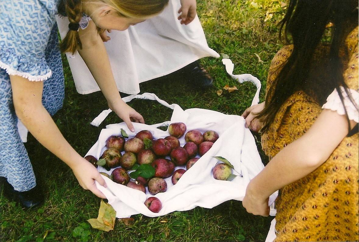 Learn how apples were harvested and used in the 19th century at the Heirloom Apple Fest at the Durant House Museum in St. Charles.