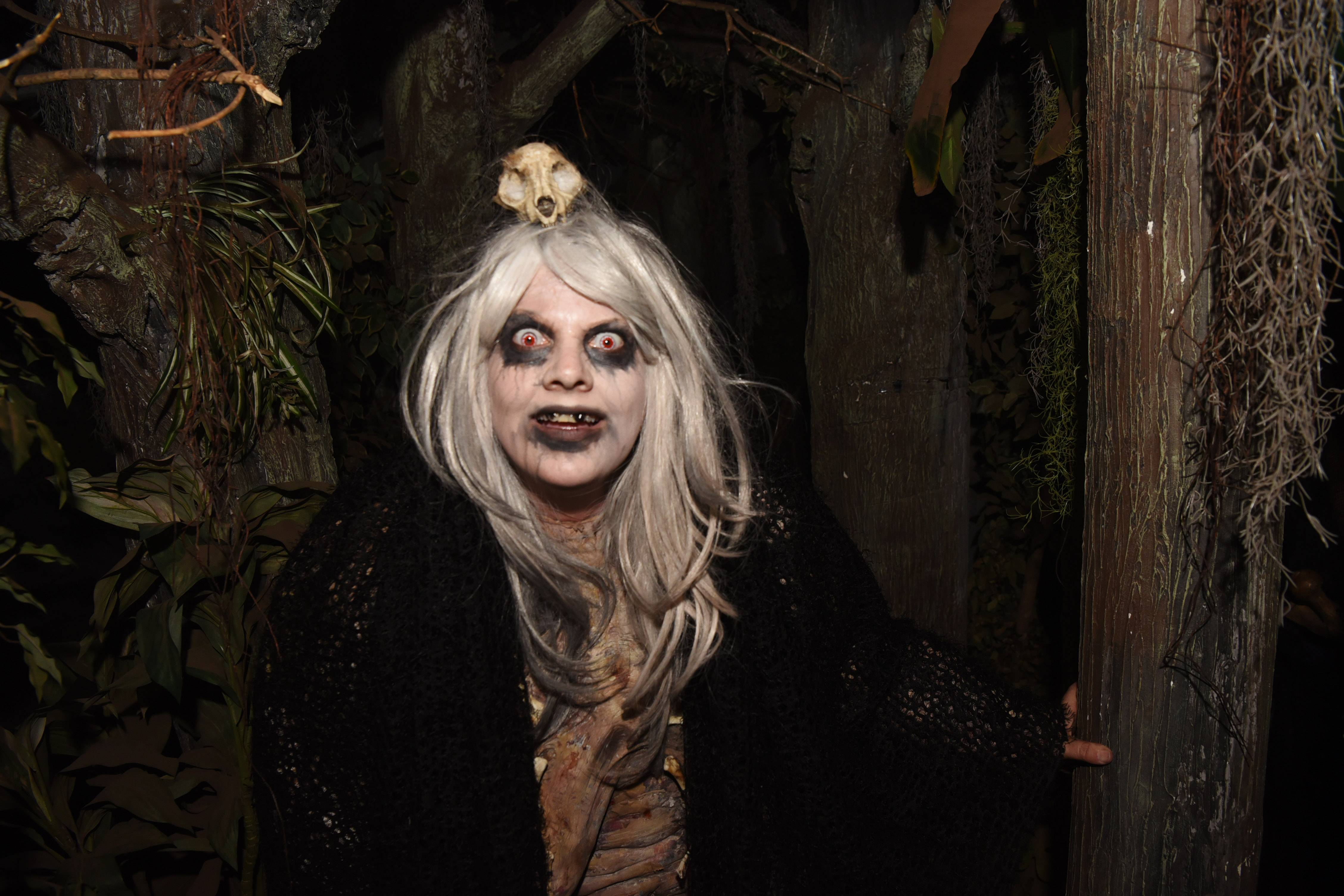 What scares you? An old hag, perhaps? Find out at Rosemont's Disturbia: Screams in the Park.