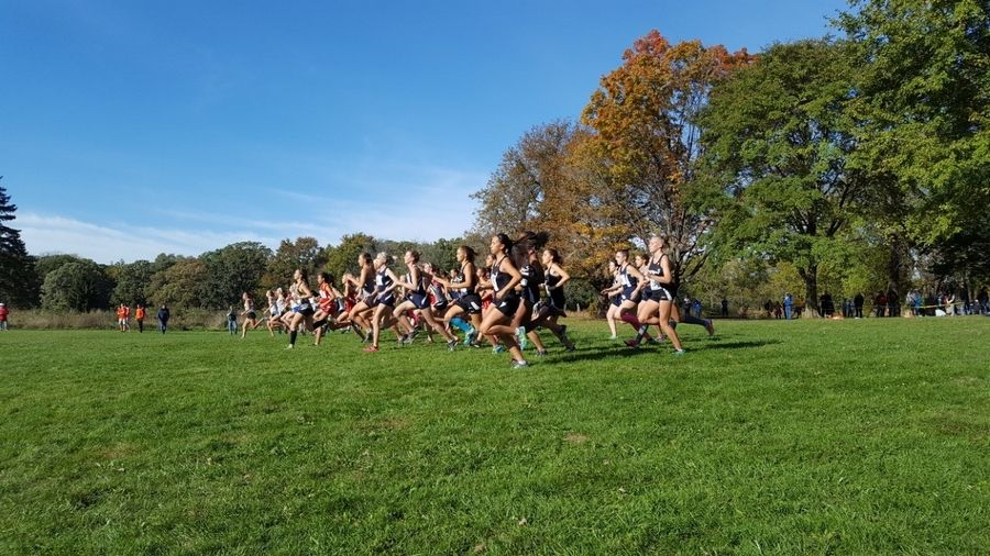 Runners begin the DuPage Valley Conference girls cross country race Friday afternoon at St. James Farm Forest Preserve in Warrenville.