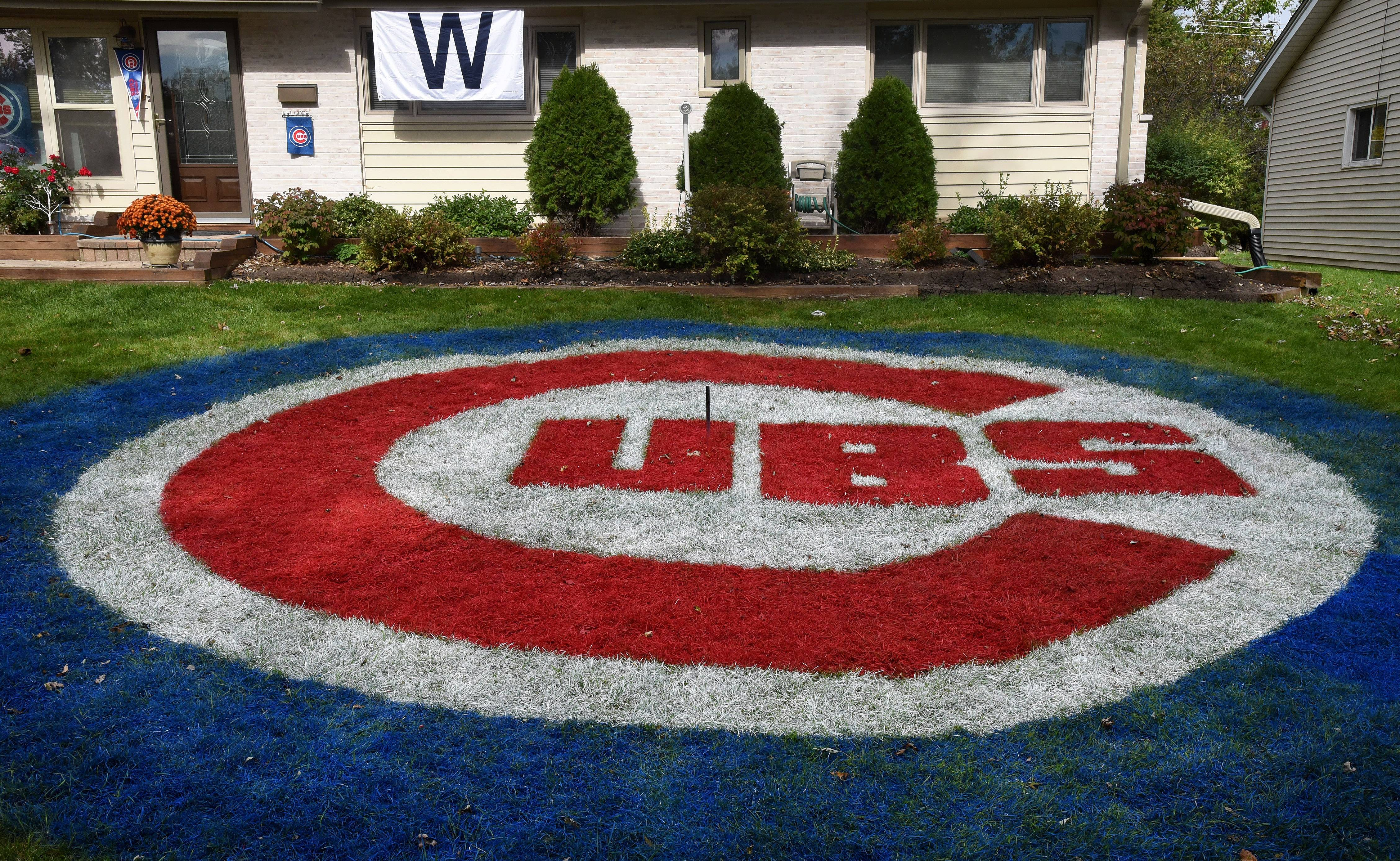A 27-foot-diameter Cubs logo lets everyone passing by know who Jim McNamara of Hoffman Estates is pulling for in the National League championship series.