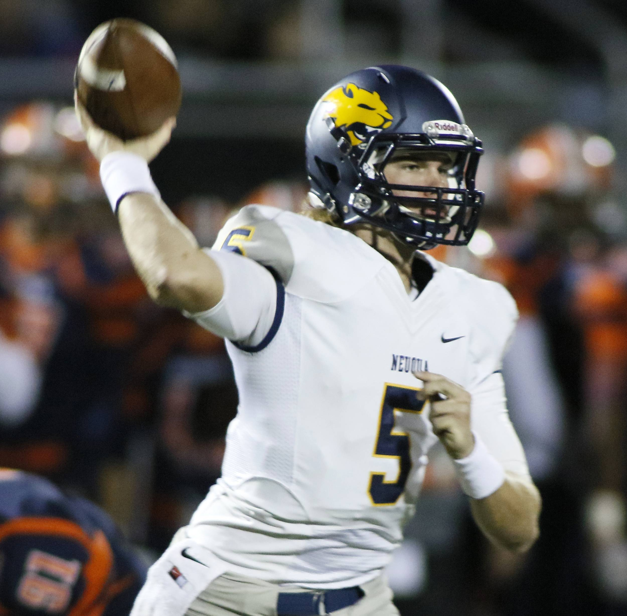 Breaking down DuPage County first-round football playoff games