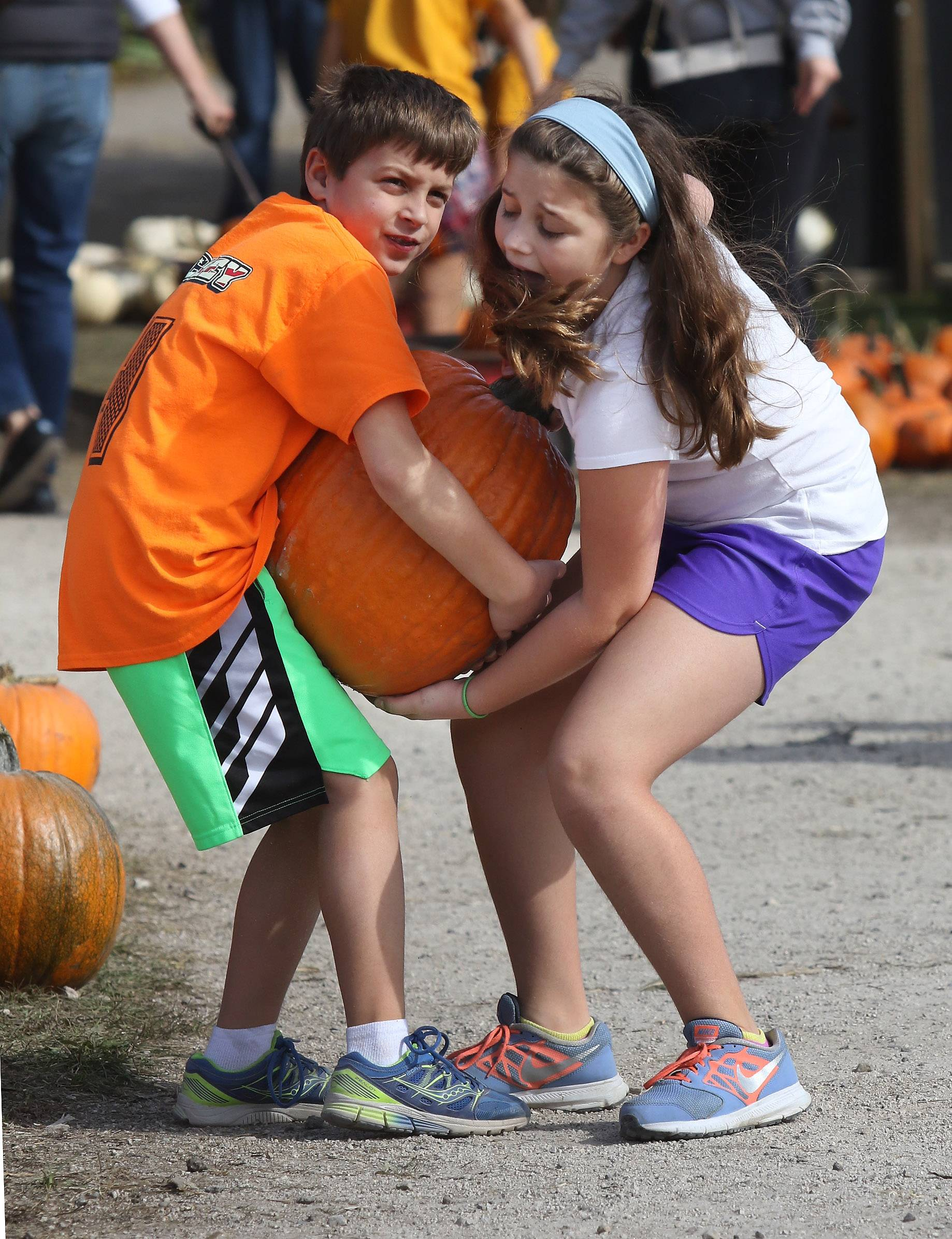 Anthony Donato, 9, of Lake Forest and his sister, Gabriella, 11, try to carry a pumpkin at Didier Farms Pumpkinfest in Lincolnshire on Monday. The festival is open daily from 9 a.m. — 6 p.m. through October 30 and on Halloween Day from 9 a.m. — 4 p.m.
