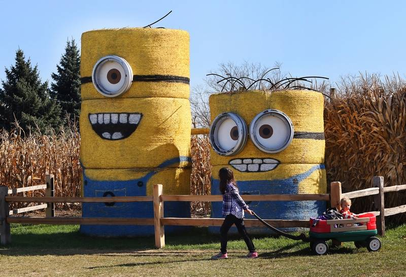 Fall Fest A Family Tradition In South Barrington