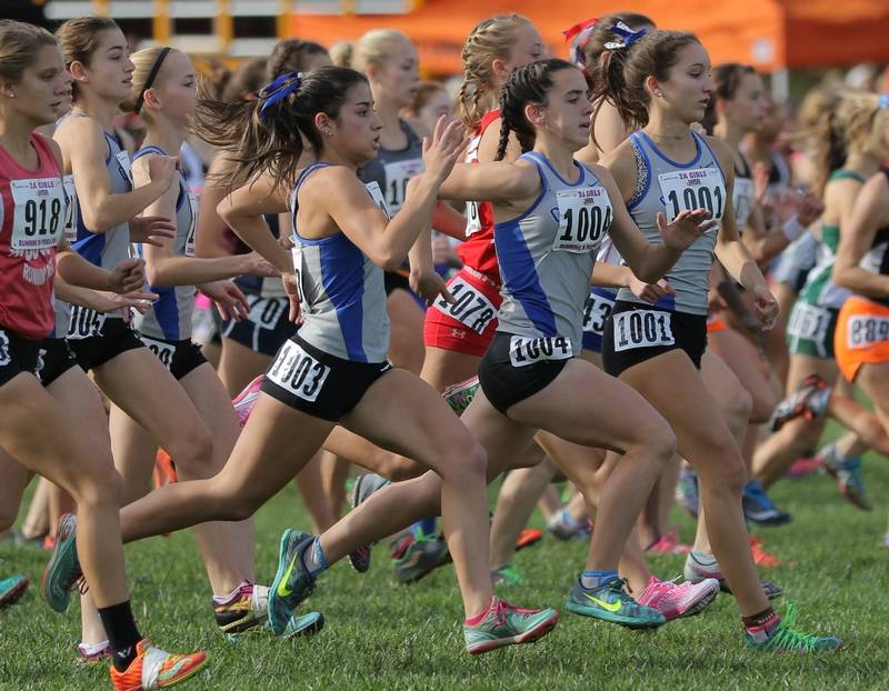 Vernon Hills girls race at the start of the Class 2A girls cross country  state meet