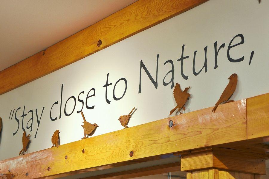 Lisle S Wild Birds Unlimited Feeds Birders Hobby