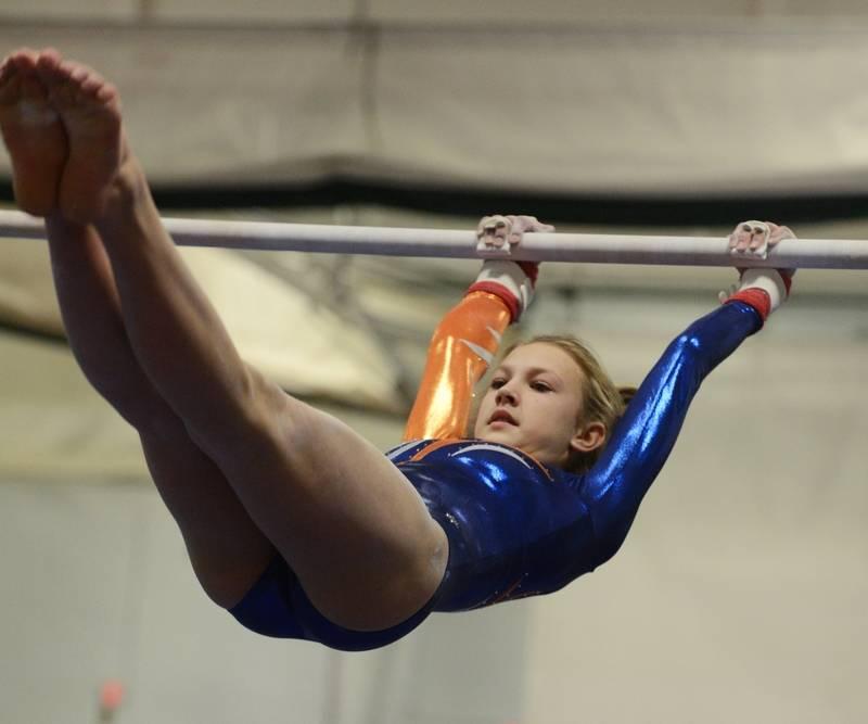 elk grove gymnastics state meet