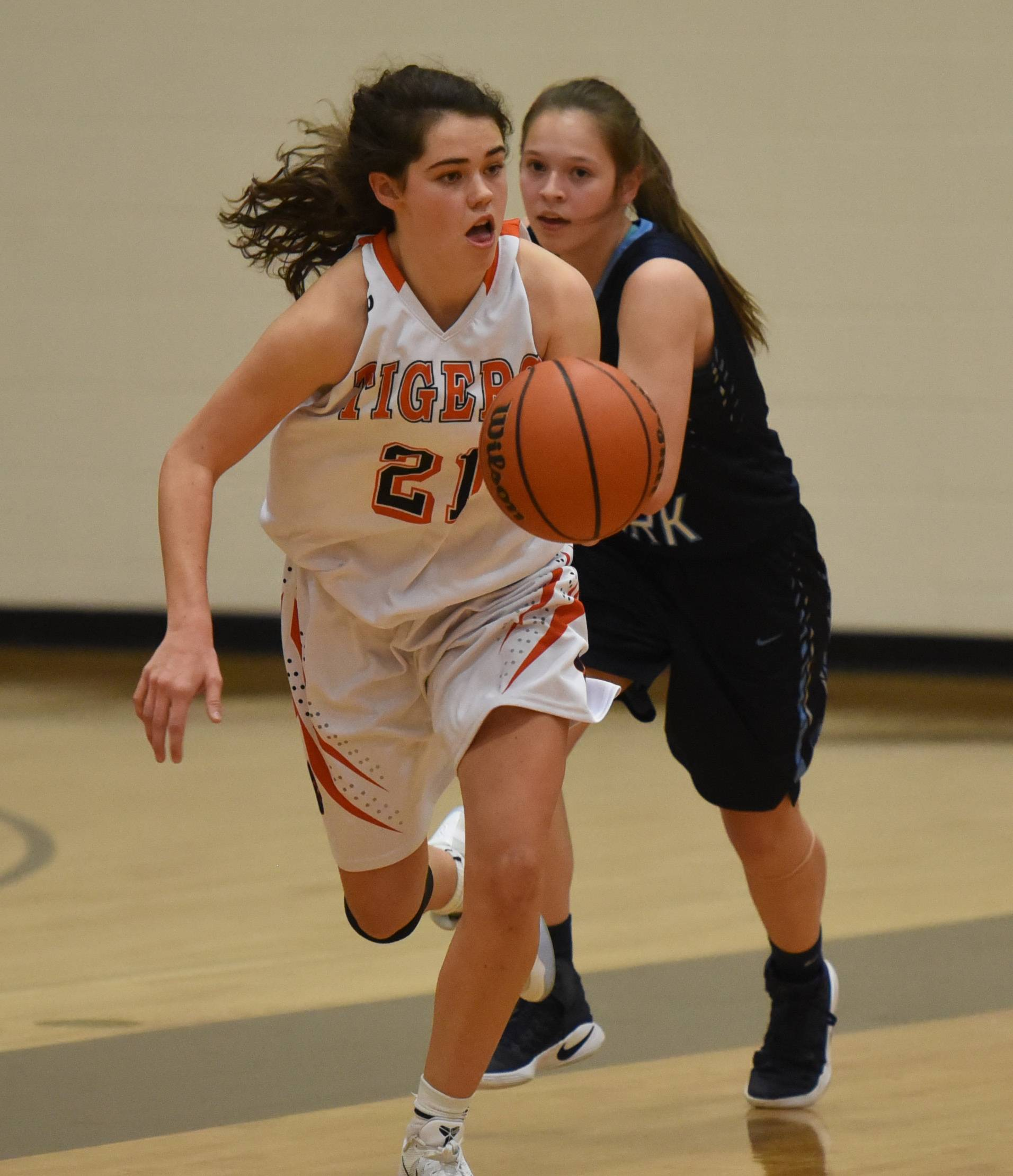 Wheaton Warrenville South's Mackenzie Stebbins drives the ball down court during the Lake Park at Wheaton Warrenville South girls basketball game Tuesday.