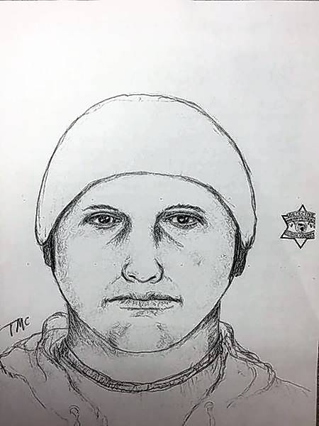Police seek suspect in Rolling Meadows home invasion, sex assault