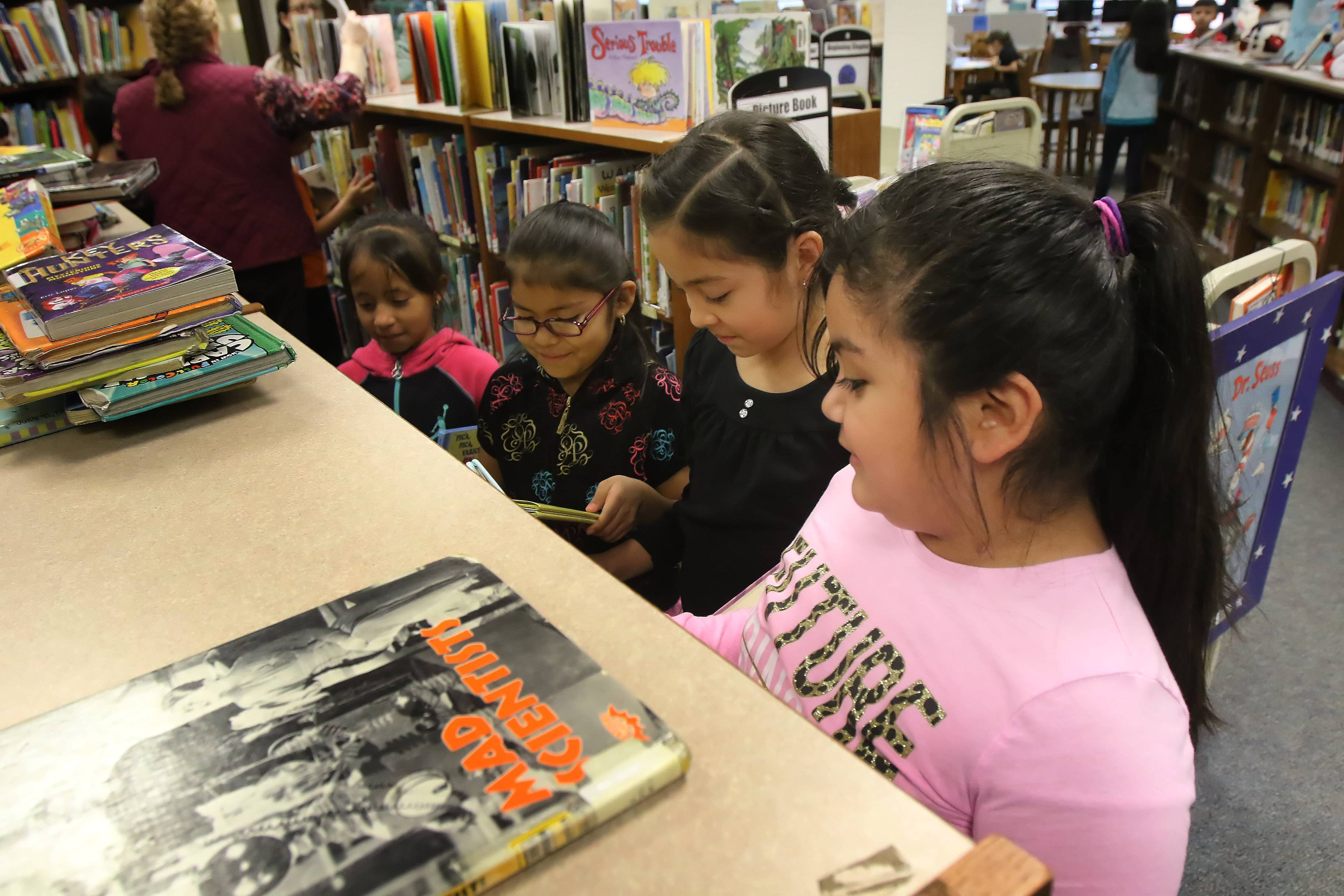 Students from Vanessa Nambo's second grade class at Diamond Lake School in Mundelein look at books in the school library. Diamond Lake District 76 will ask voters for approval to borrow $11.4 million to make improvements at all three schools.