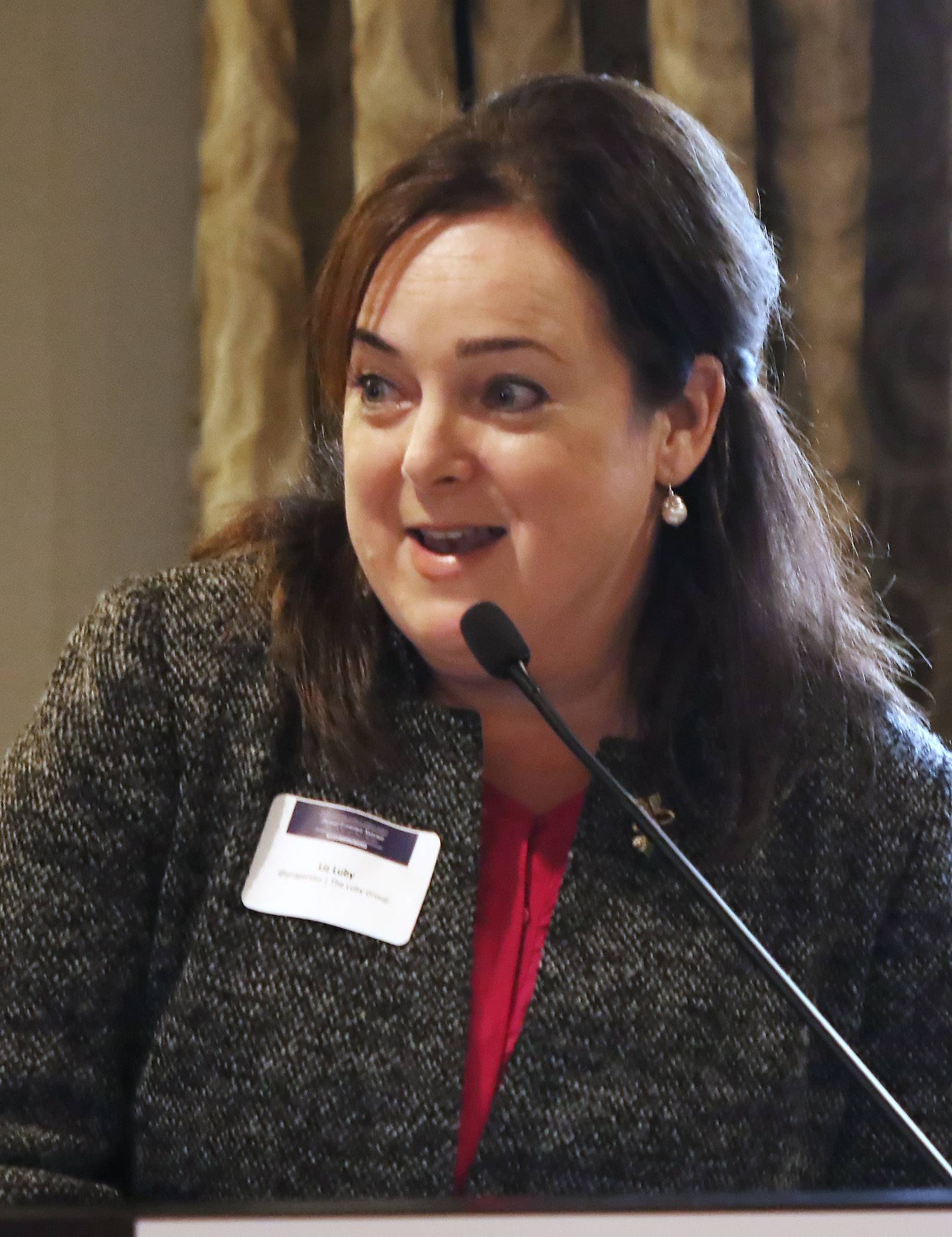 "Barrington Area Chamber of Commerce Chairman Liz Luby speaks during the 2017 Annual Economic Summit at Barrington's White House on Wednesday. The ""State of the Barrington Region"" breakfast featured representatives from nine area villages."