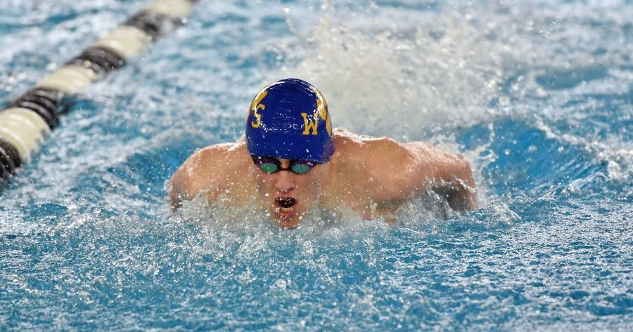 Wheeling's Jacob Gorenyuk powers through the 100-yard fly during the Mid-Suburban League meet at Conant on Saturday.