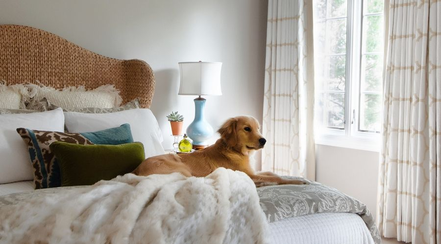 Jennifer McGinnis, owner of Redux Interior Design in Lake Zurich, likes to layer textures for balance and comfort. Here, a master bedroom sports a woven grass headboard, velvet throw pillows and chunky chenille shams (not to mention an elegant golden retriever).