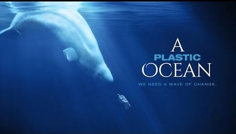 """A Plastic Ocean"" will be shown at the College of Lake County Grayslake Campus March 10 at 6:30 p.m."