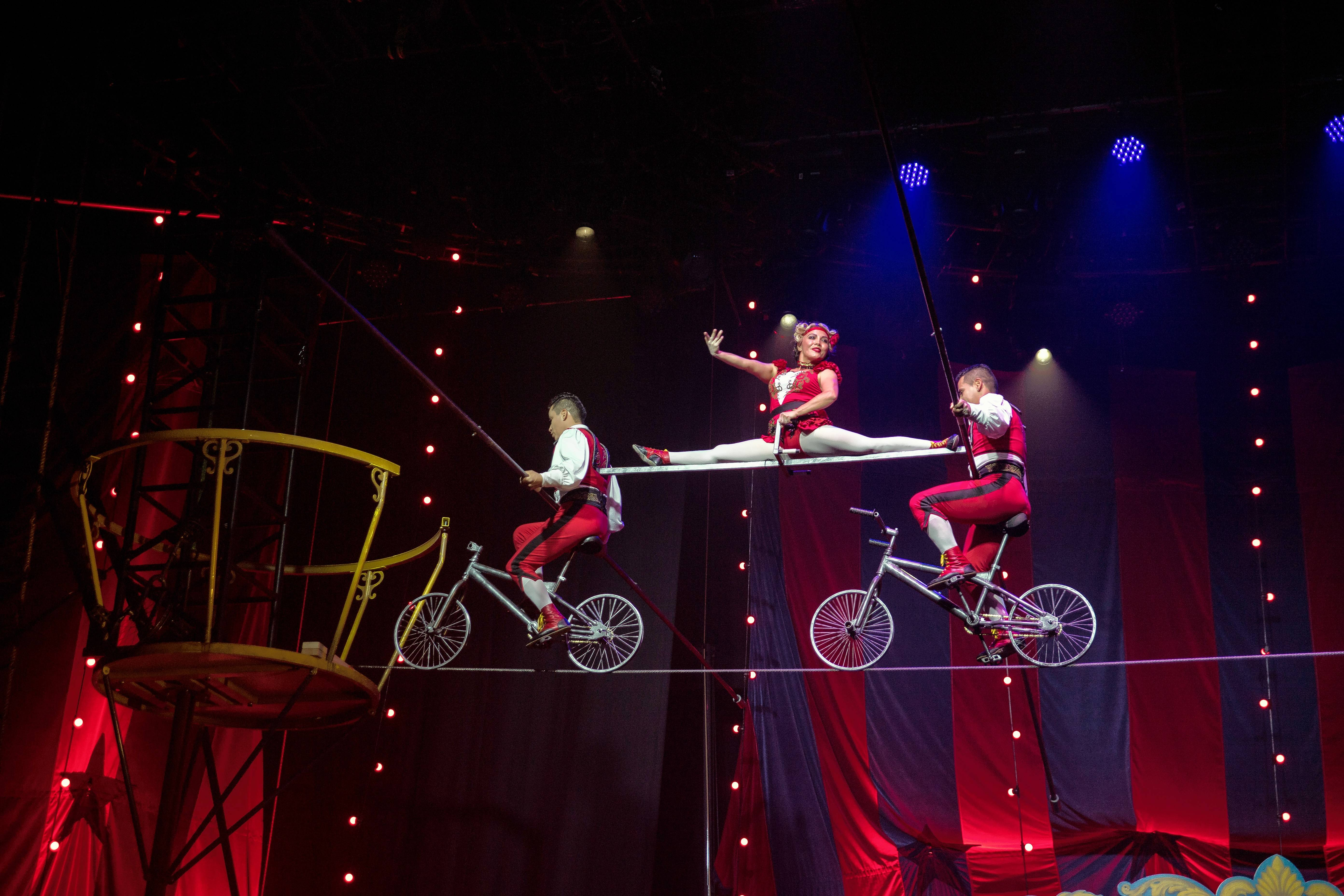 "A variety of historically informed acts populate the international tour of ""Circus 1903 -- The Golden Age of Circus,"" which makes it Chicago debut at the Oriental Theatre from Tuesday, March 21, through Sunday, March 26."