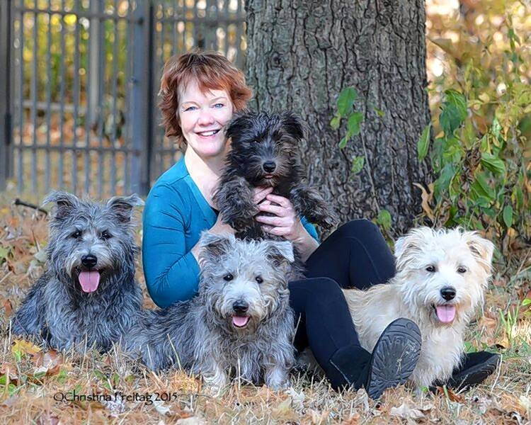 Nine rare irish puppies born just in time for st patricks day theresa nesbitt of st charles poses with her favorite four legged pals glen altavistaventures Images
