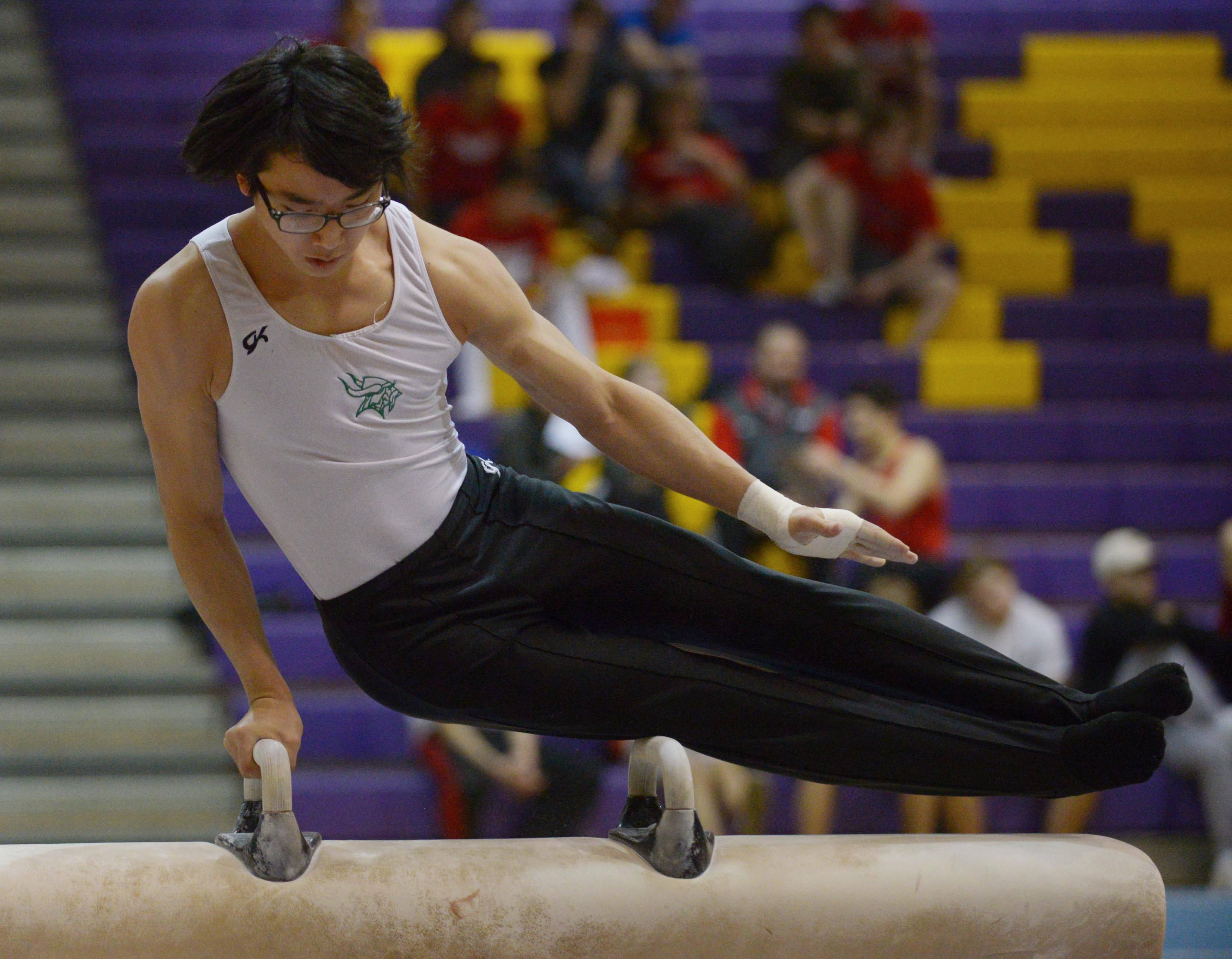 Boys gymnastics: Glenbard West tops field at Mustang Invite