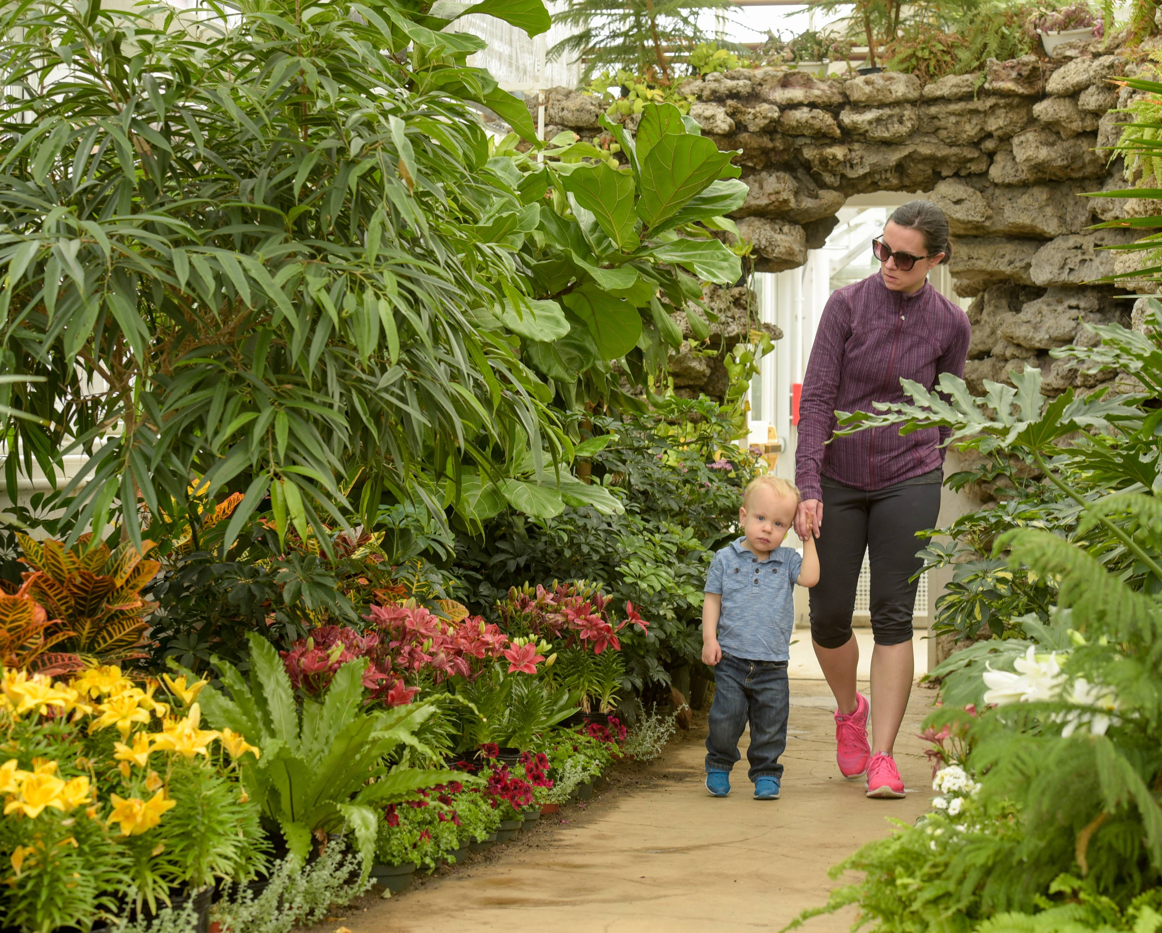 Sarah Honold and her son Graham, 2, of Elmhurst check out the flowers Sunday in the Elmhurst Park District's Wilder Park Conservatory. The conservatory's annual Spring Flower Show run opened this weekend and runs through the end of the month.