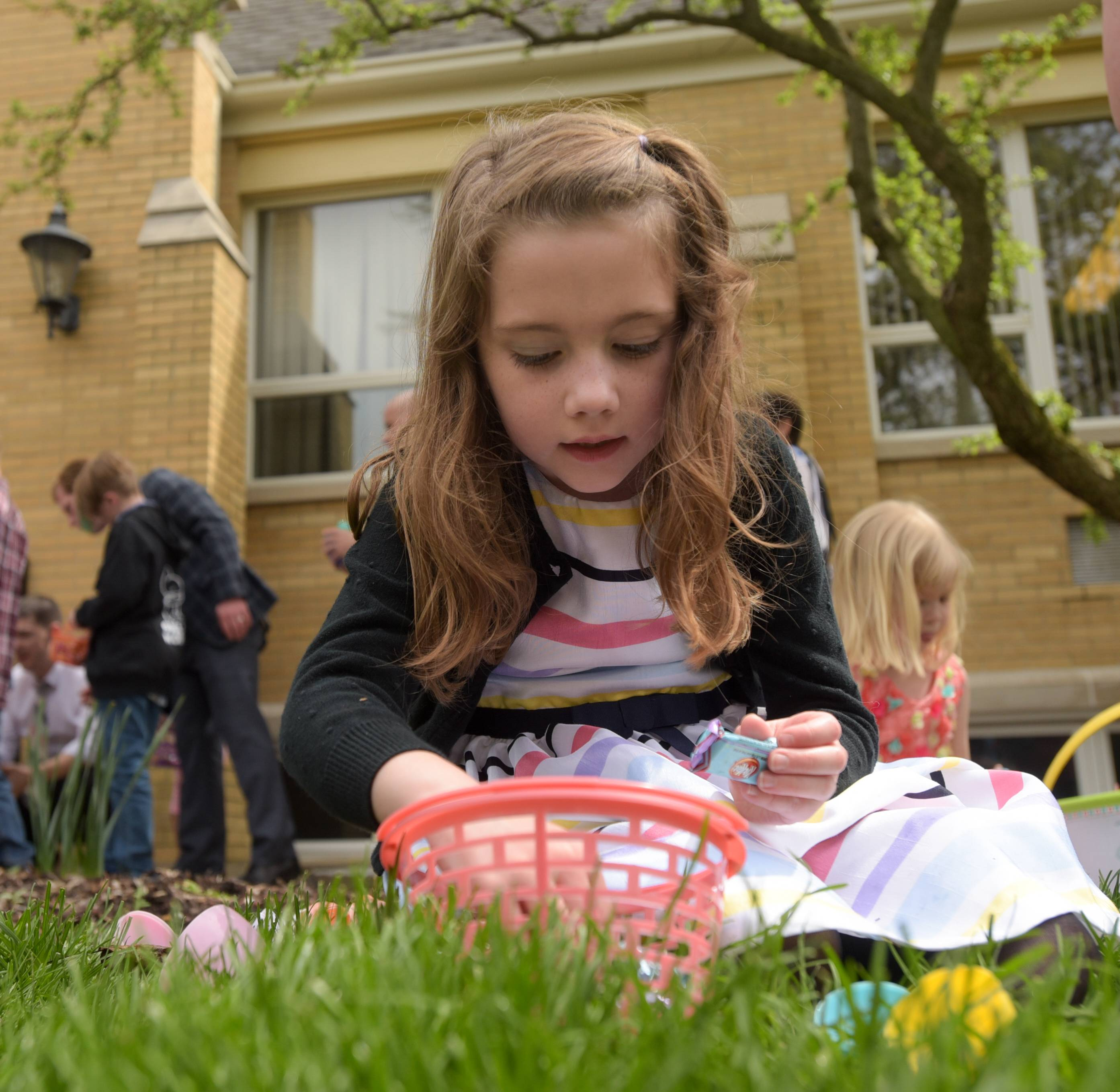 Molly Schroeder, 6 of Yorkville opens up the eggs she collected during the annual Easter Sunday egg hunt at Calvary Episcopal Church in Batavia on Sunday.