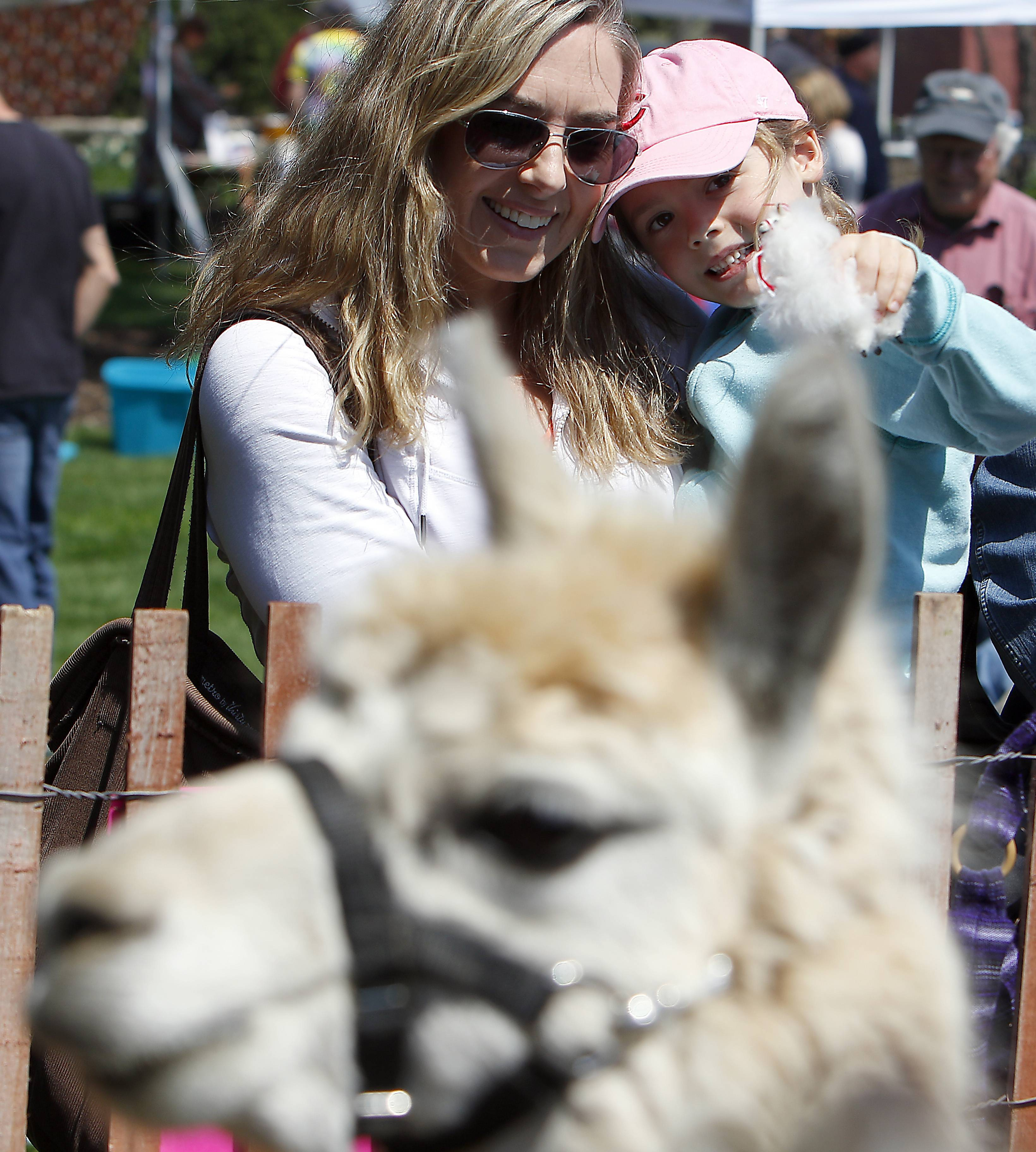 "Nicole Kothe of Geneva holds her daughter Makena, 5, as they try to get the attention of an alpaca Saturday during the 9th annual Earth Day festival at Peck Farm Park in Geneva. The event, which takes place again this Saturday, April 22, features a small petting zoo, rain barrels for sale, document shredding, bicycle safety checks, information about ""green"" practices, chalk art, children's activities and chair massages."