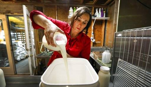 In this March 24, 2017 photo, Rachel Moser pours raw milk into a container on her Be Whole Again Farm in Excelsior Springs, Mo. It is illegal to sell raw milk for human consumption in Delaware, Hawaii, Iowa, Louisiana, Montana, Nevada, New Jersey and Rhode Island but local food groups, organic farming advocates and libertarians opposing government regulation are fighting to change that. They have succeeded at legalizing raw milk sales in some form in 42 states and wont rest until all states allow it. (AP Photo/Charlie Neibergall)