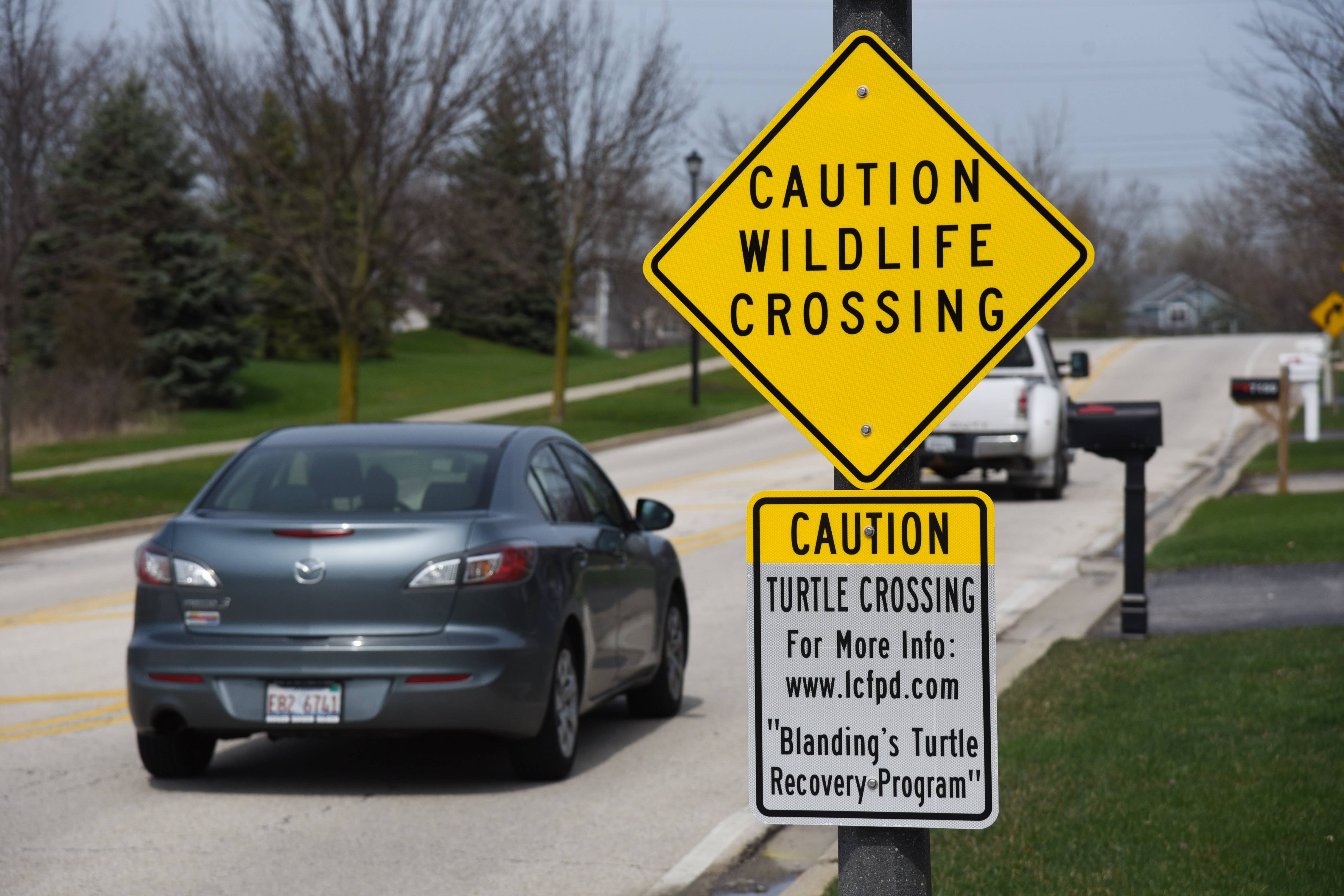 Two Prairie Crossing Charter School students lobbied for turtle crossing signs as part of a project.