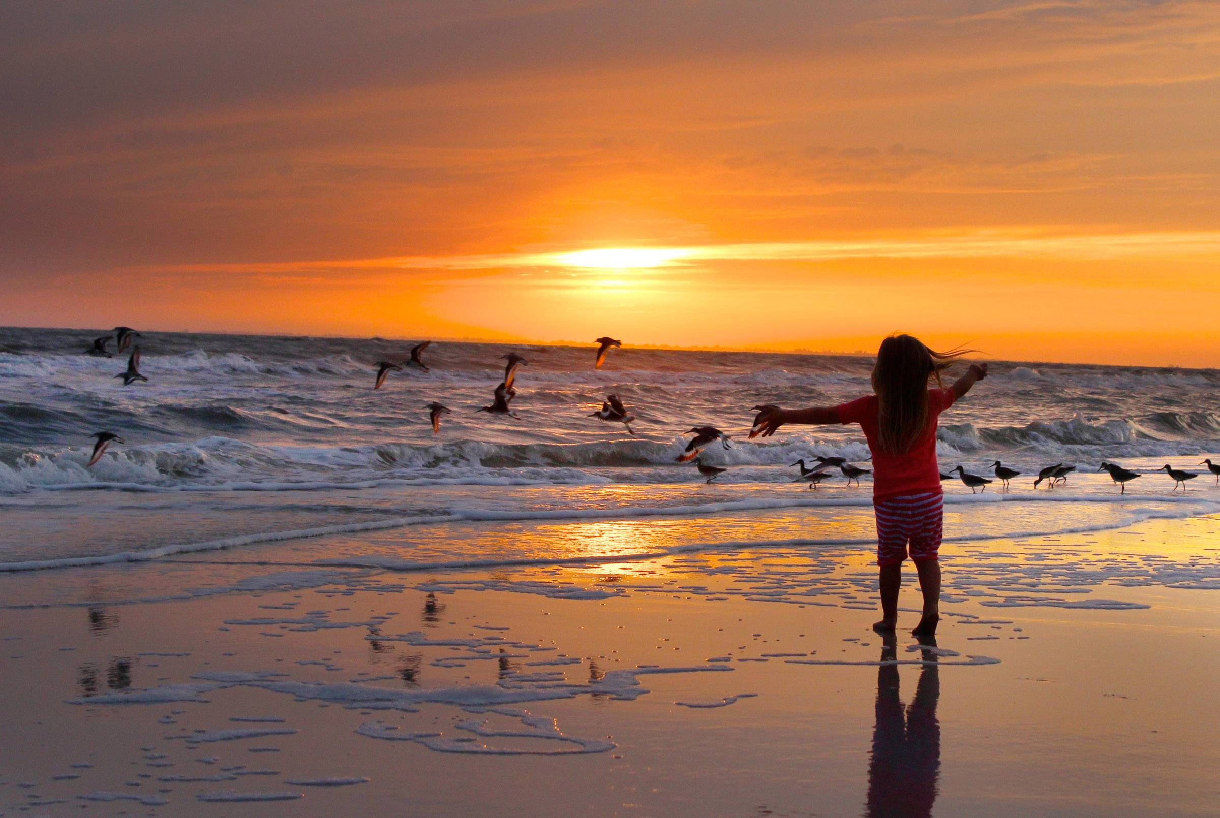A young girl plays with birds along Ft. Myers Beach at sunset in Florida last March.