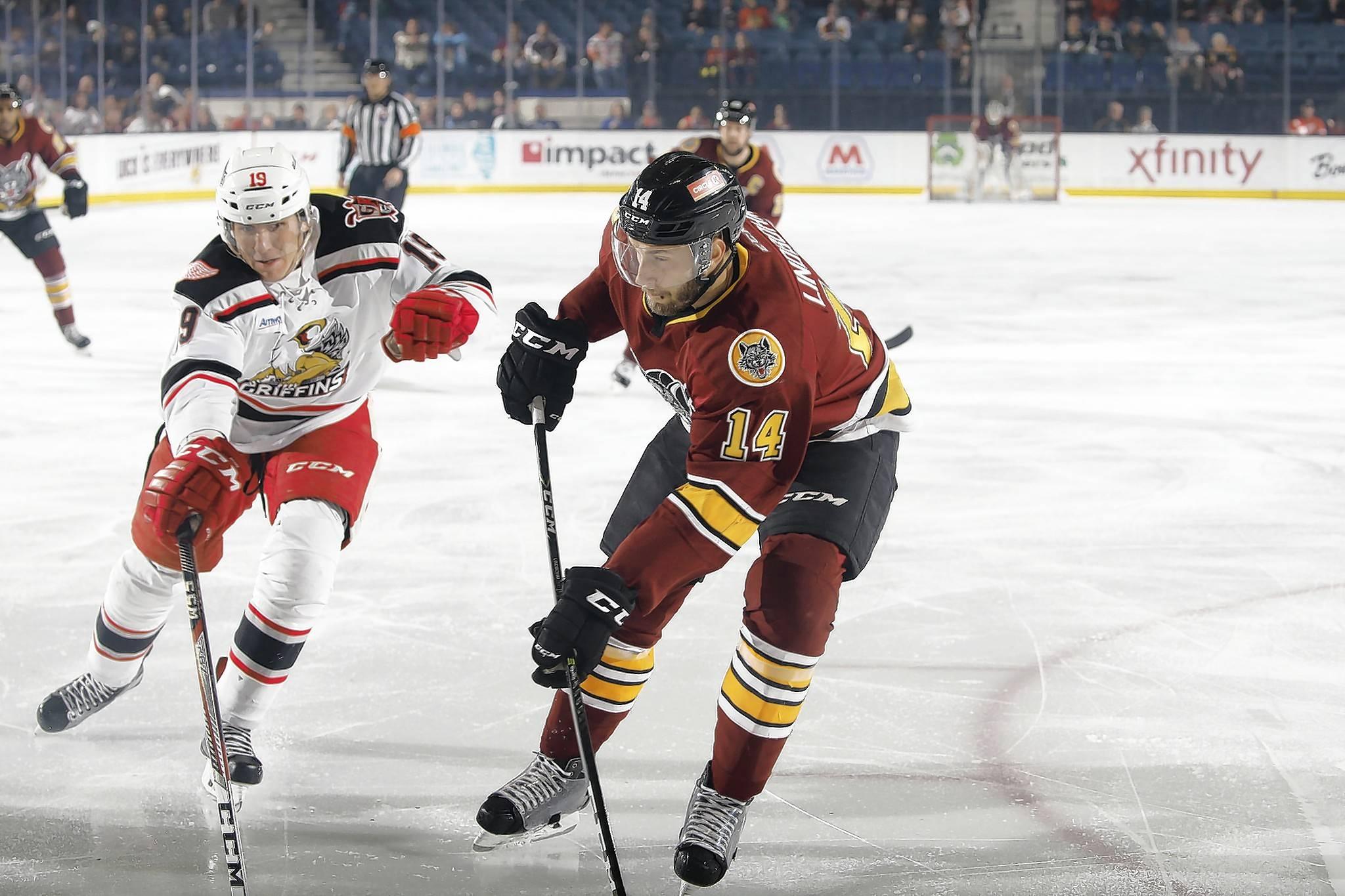Chicago Wolves defenseman Petteri Lindbohm (14) will try to slow down the high-scoring attack of the Grand Rapids Griffins when the two teams meet in Game 5 Saturday at Allstate Arena.