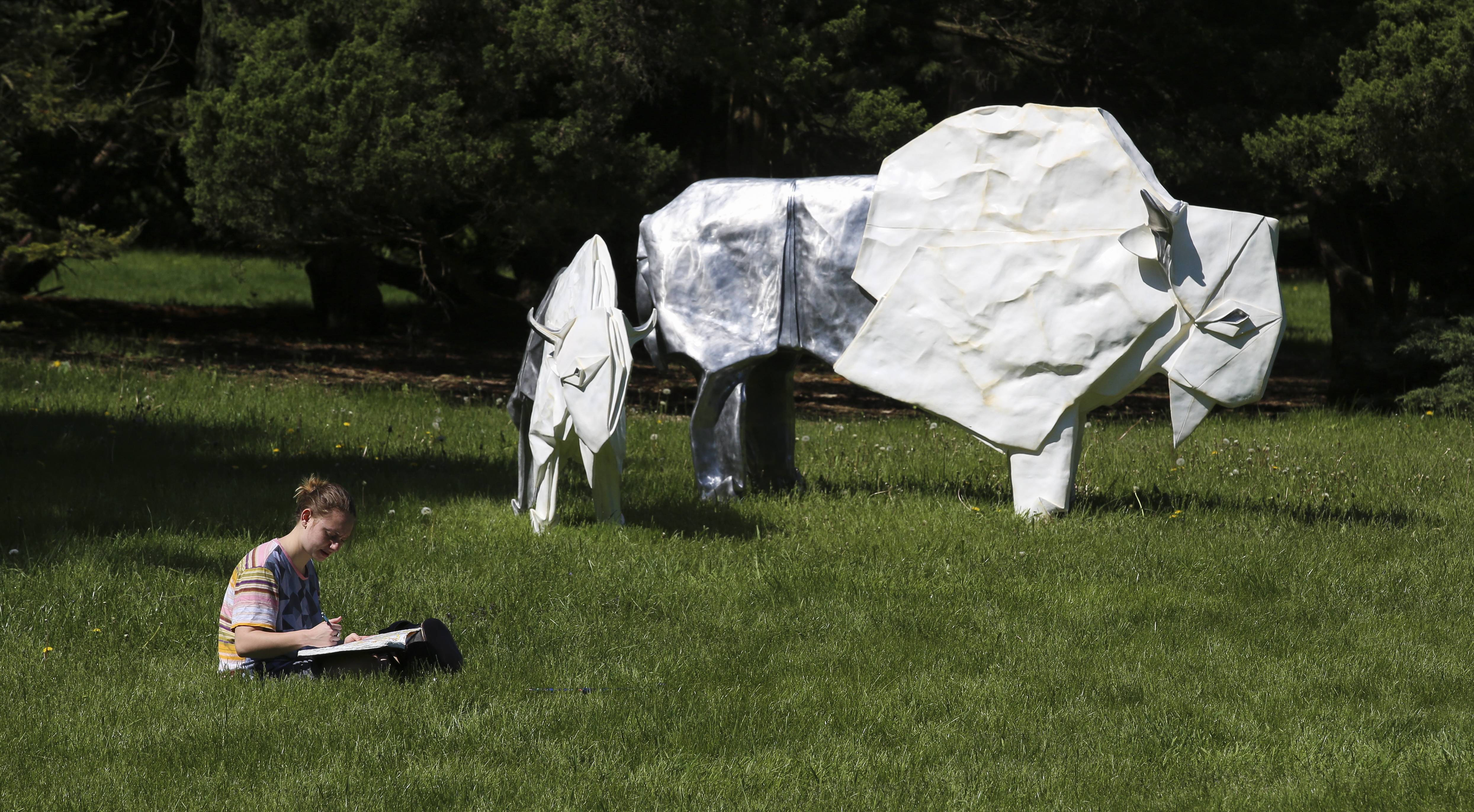 Origami-inspired sculptures to dot Morton Arboretum grounds this summer