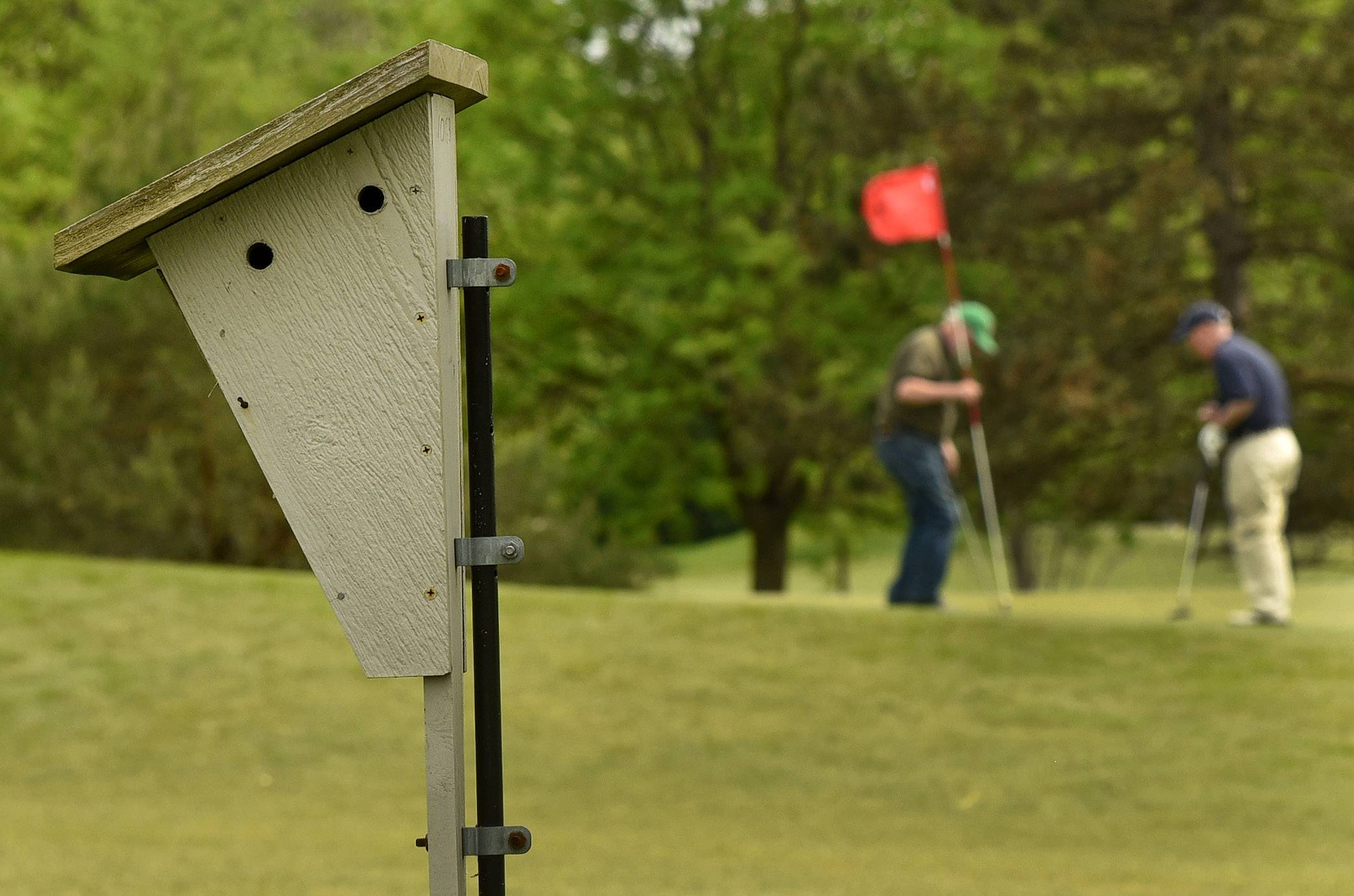 A couple of golfers finish on the 1st green, with one of Joe Arndt's birdhouses in the foreground at Arlington Lakes Golf Club.