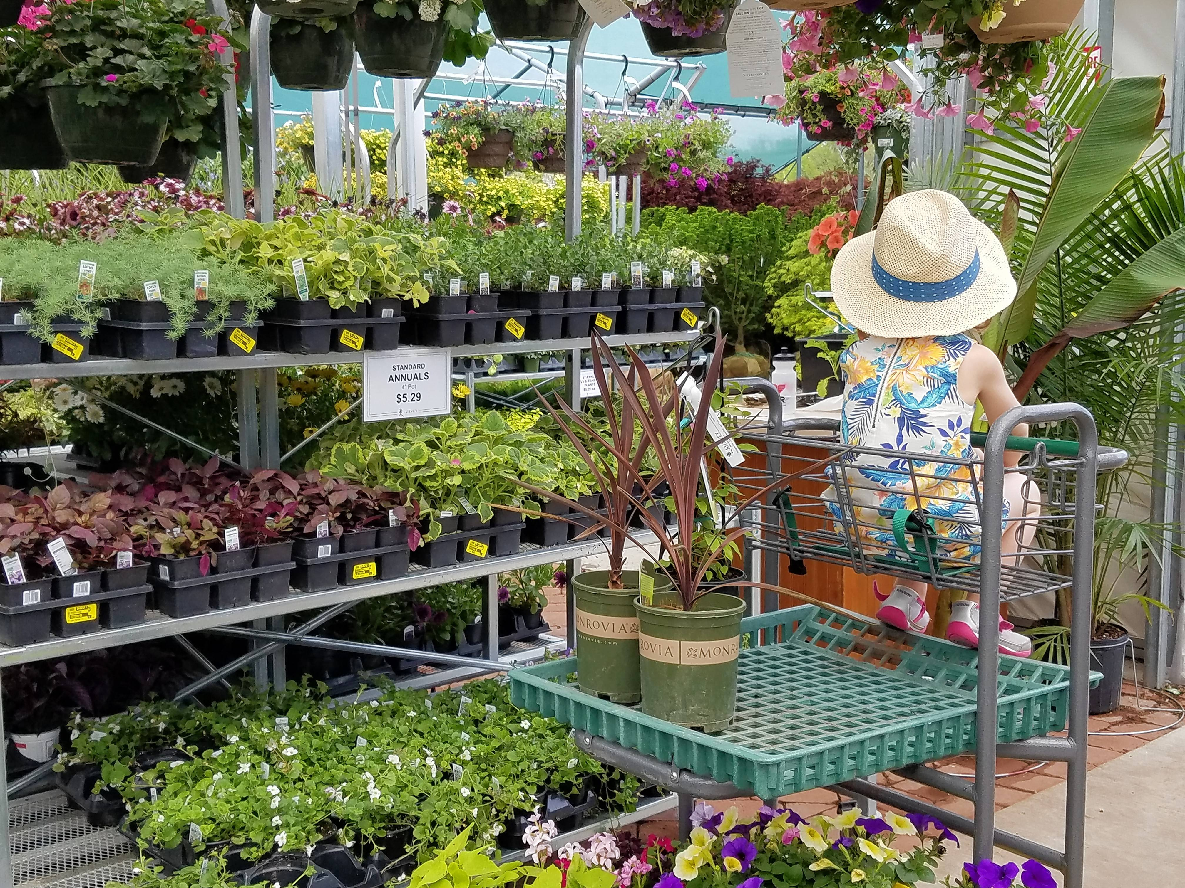 Last year Lurvey Garden Center opened its new 14,000-square-foot building with wider aisles and much more room for garden essentials.