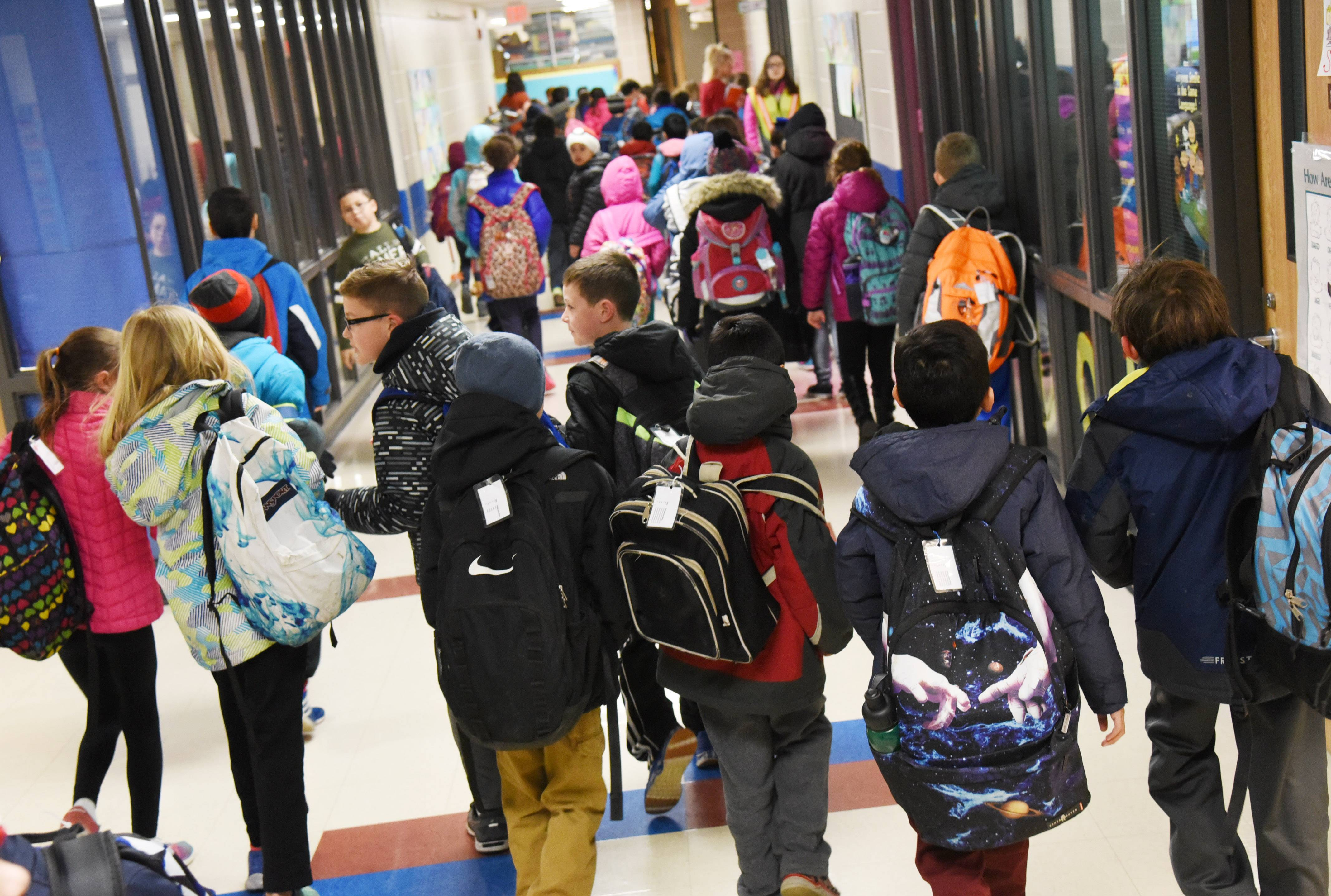A hallway scene at Hawthorn Elementary South in Vernon Hills. Hawthorn Elementary District 73 plans to consolidate kindergarten classes in a new building to provide space at other schools to ease crowding.