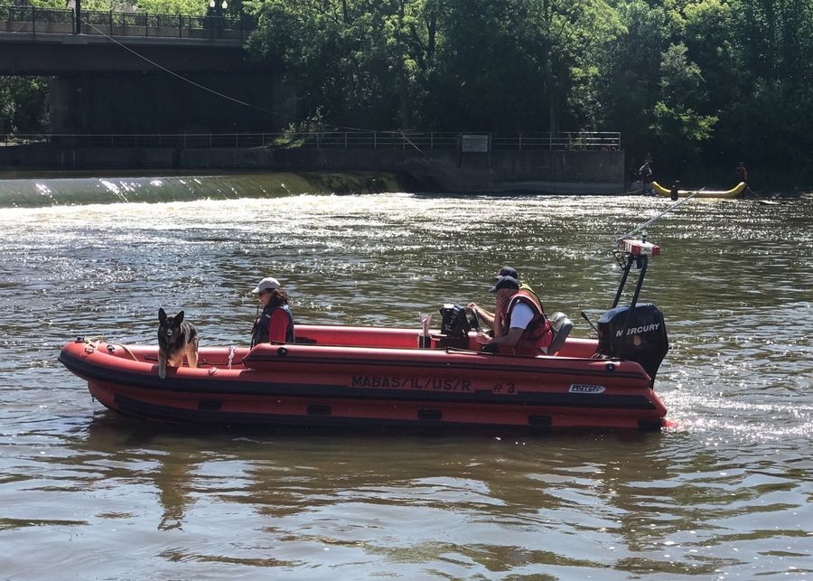 Rescue workers search the Fox River south of Route 62 in Algonquin Friday morning for a man last seen in the river Thursday night.