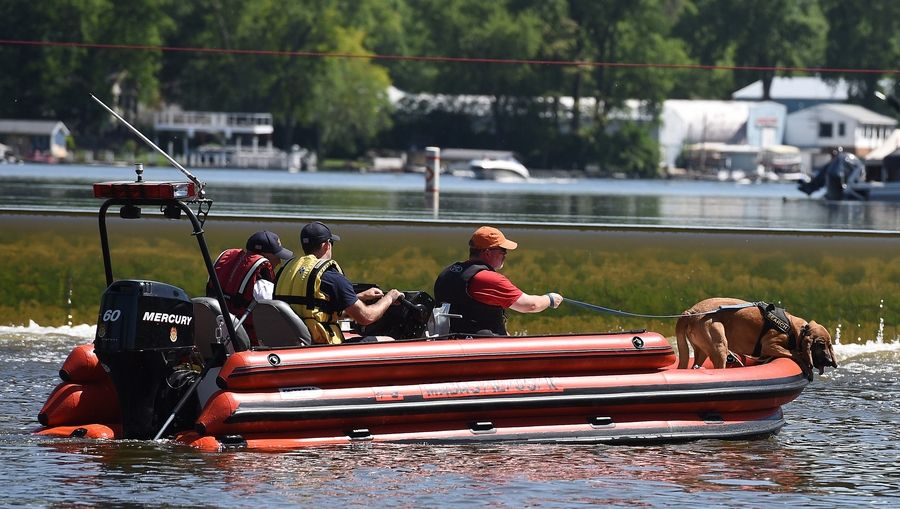A search dog indicates interest by leaning over the side of the boat as rescue workers search the Fox River south of the dam in Algonquin Friday morning for a man last seen in the river Thursday night.