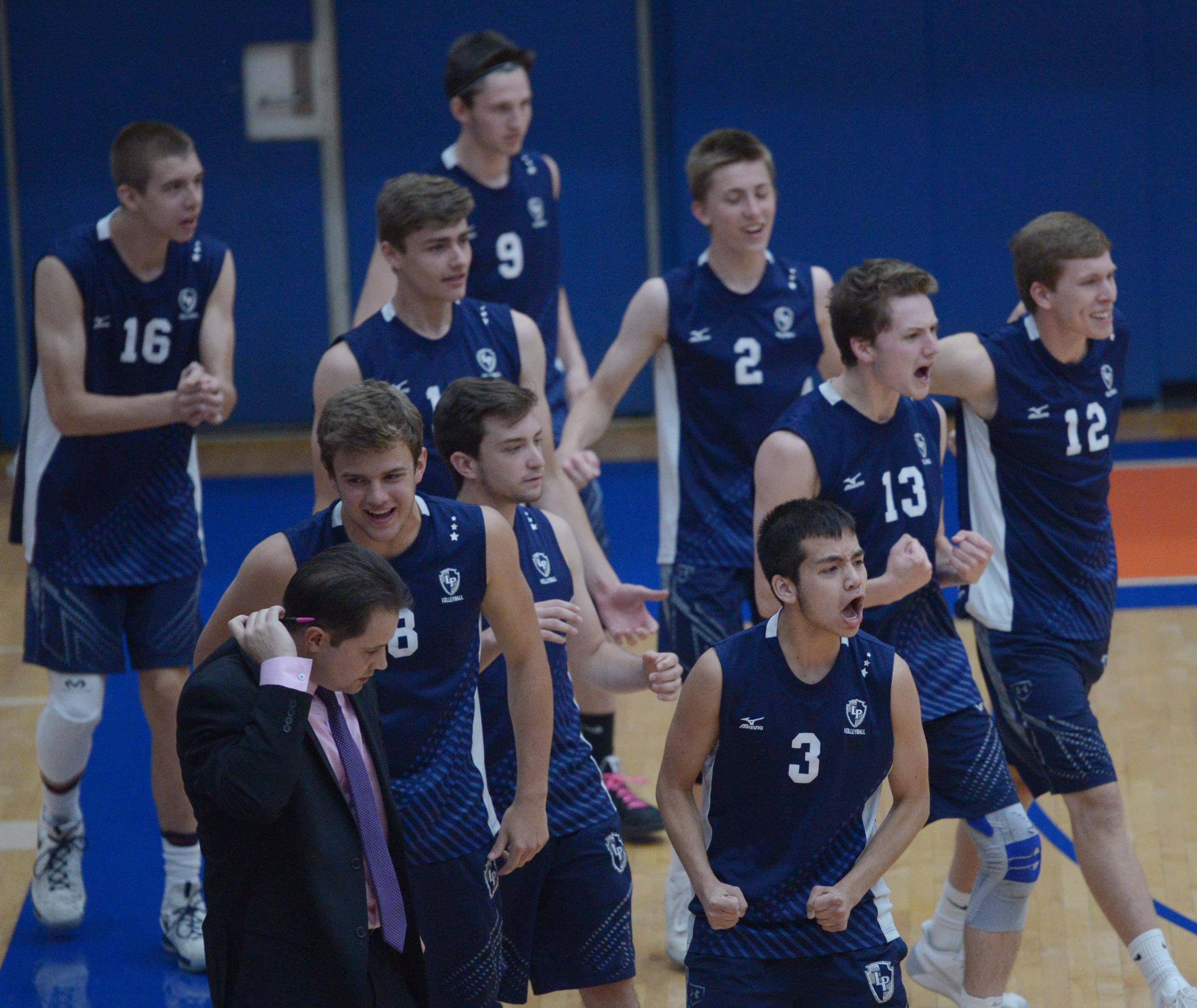 Lake Park substitutes celebrate a point by their team during the boys volleyball state quarterfinals at Hoffman Estates High School Friday.