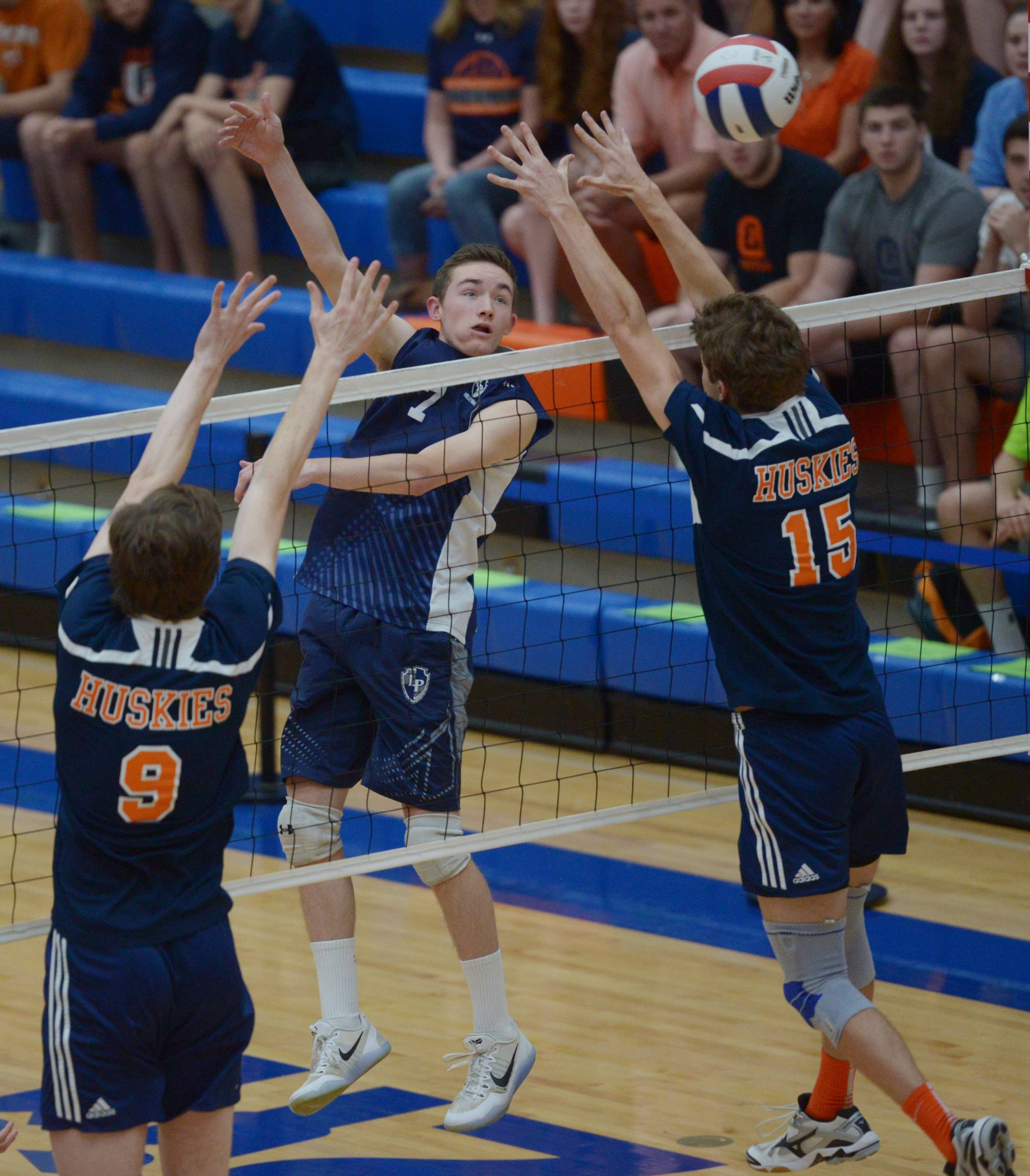 Lake Park's Jack Fischer looks for a kill as Oak Park-Roiver Forest's Jack Valenti, left, and Ben Hancock try for a block during the boys volleyball state quarterfinals at Hoffman Estates High School Friday.