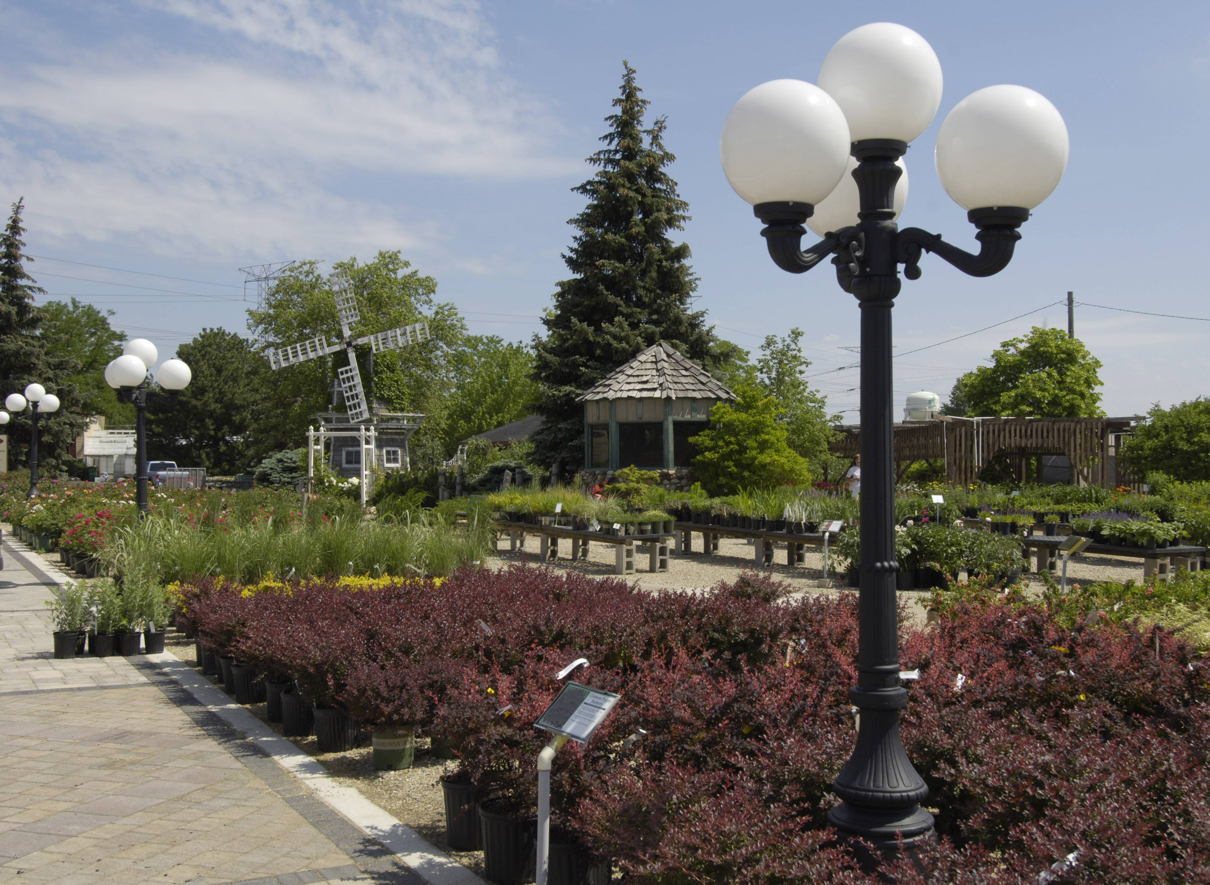 Berthold's Floral, Gift and Garden Center in Elk Grove Village, which has been in operation since 1948, will close in coming weeks to make way for a new headquarters for the village's public works department